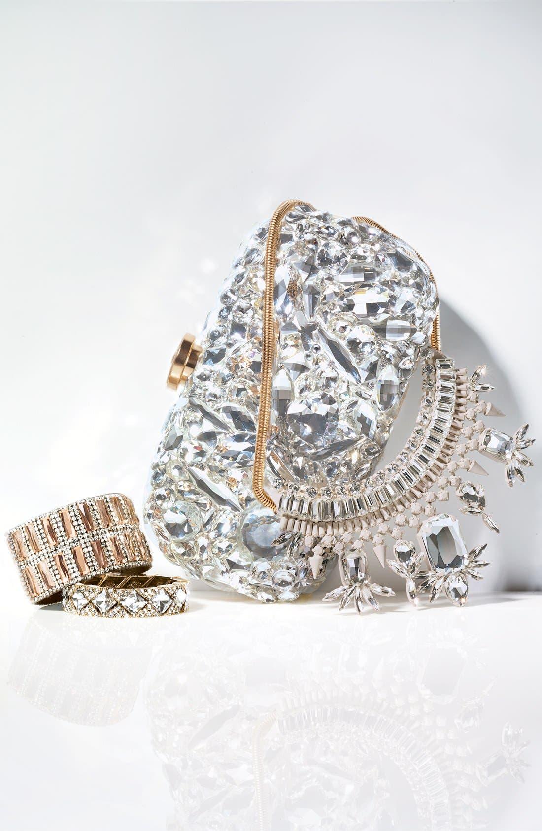 Alternate Image 6  - Natasha Couture 'Ice Crystal' Minaudiere