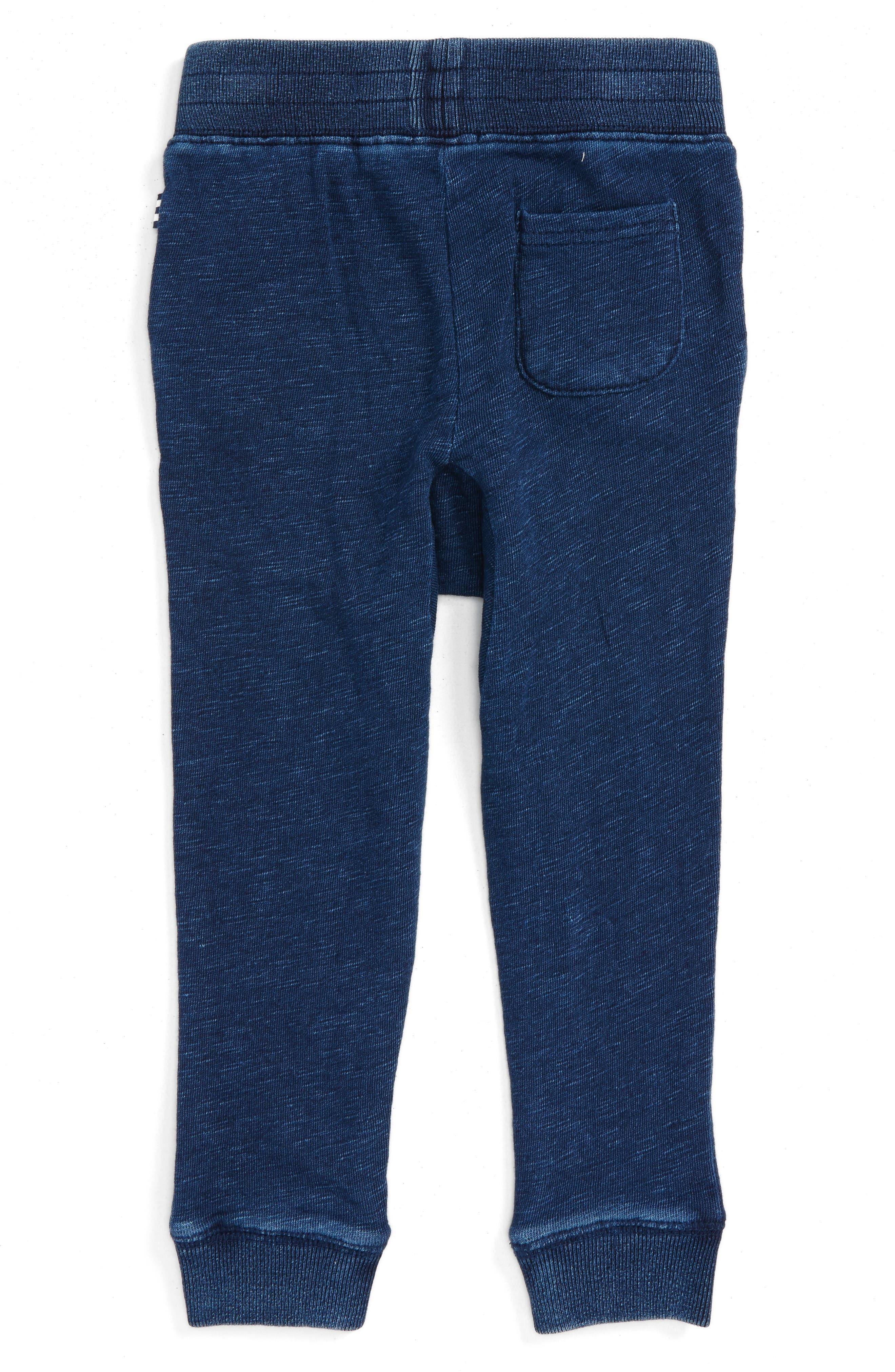 Double Knit Jogger Pants,                             Alternate thumbnail 2, color,                             Dark Stone