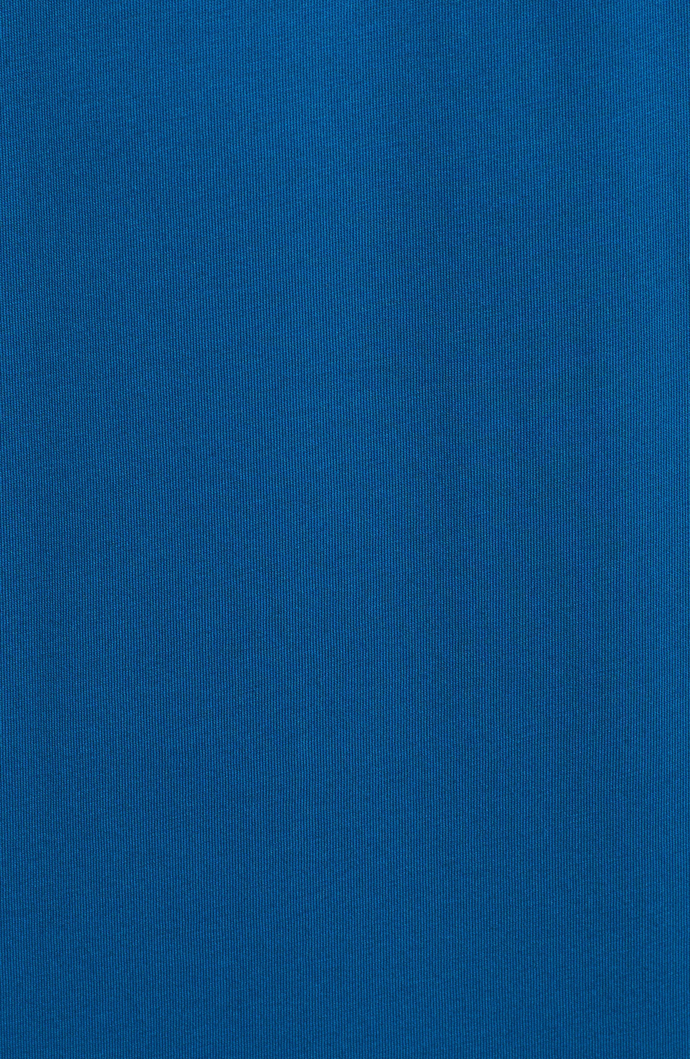 'Trout Fitz Roy' Organic Cotton Polo,                             Alternate thumbnail 5, color,                             Radar Blue