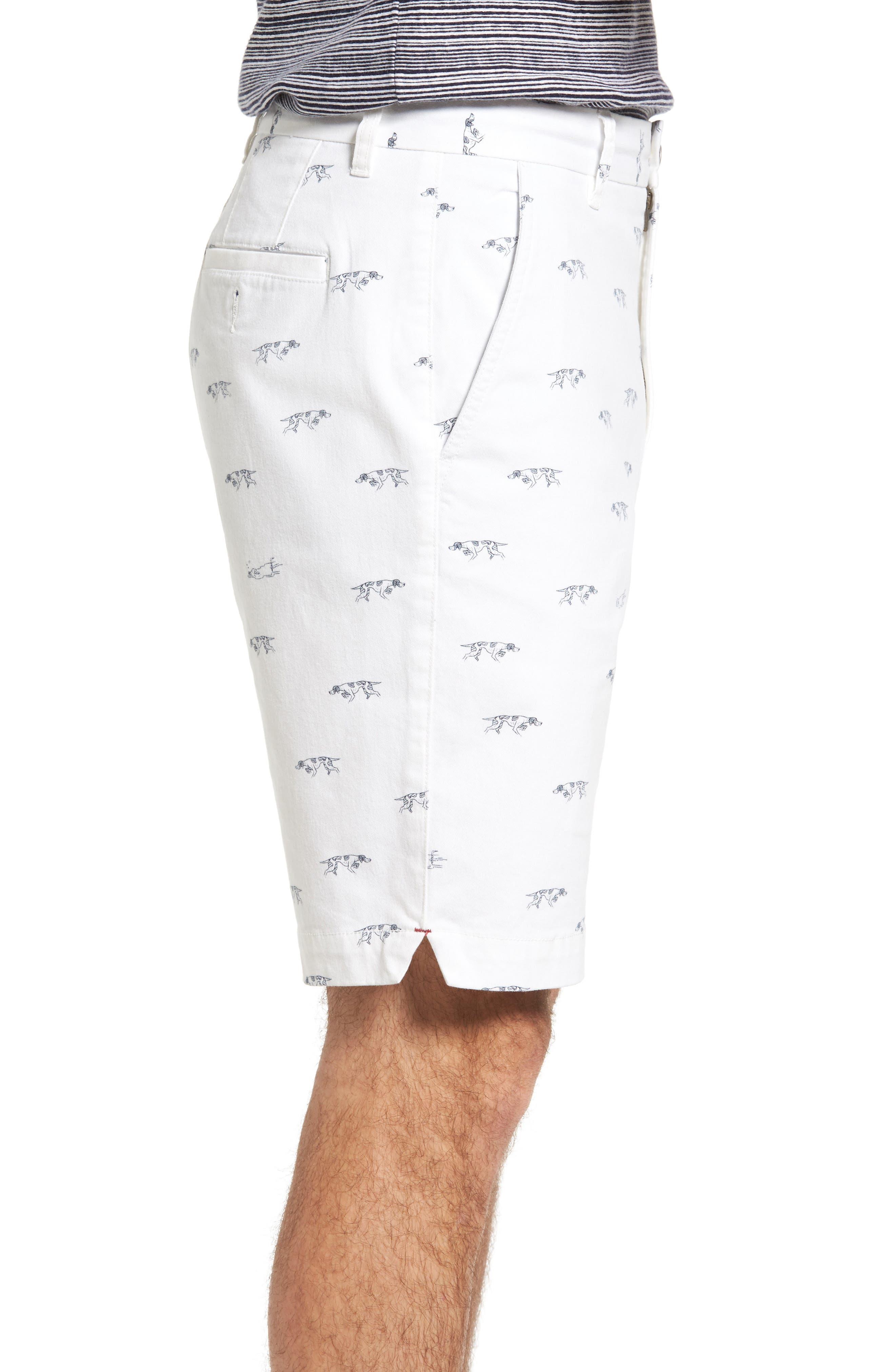 Alternate Image 3  - Rodd & Gunn Lauriston Print Twill Shorts