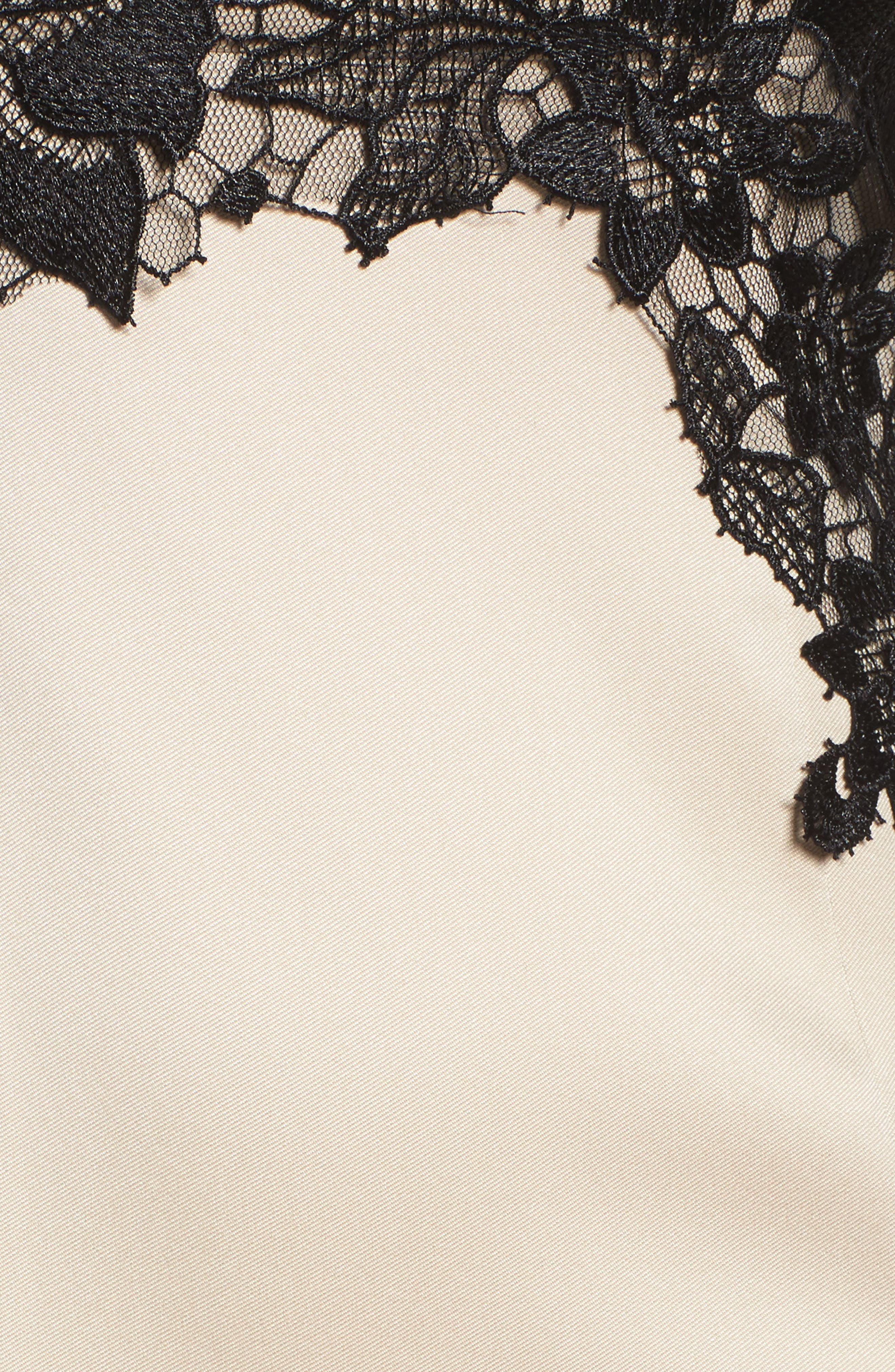Lace Mermaid Gown,                             Alternate thumbnail 5, color,                             Champagne Black