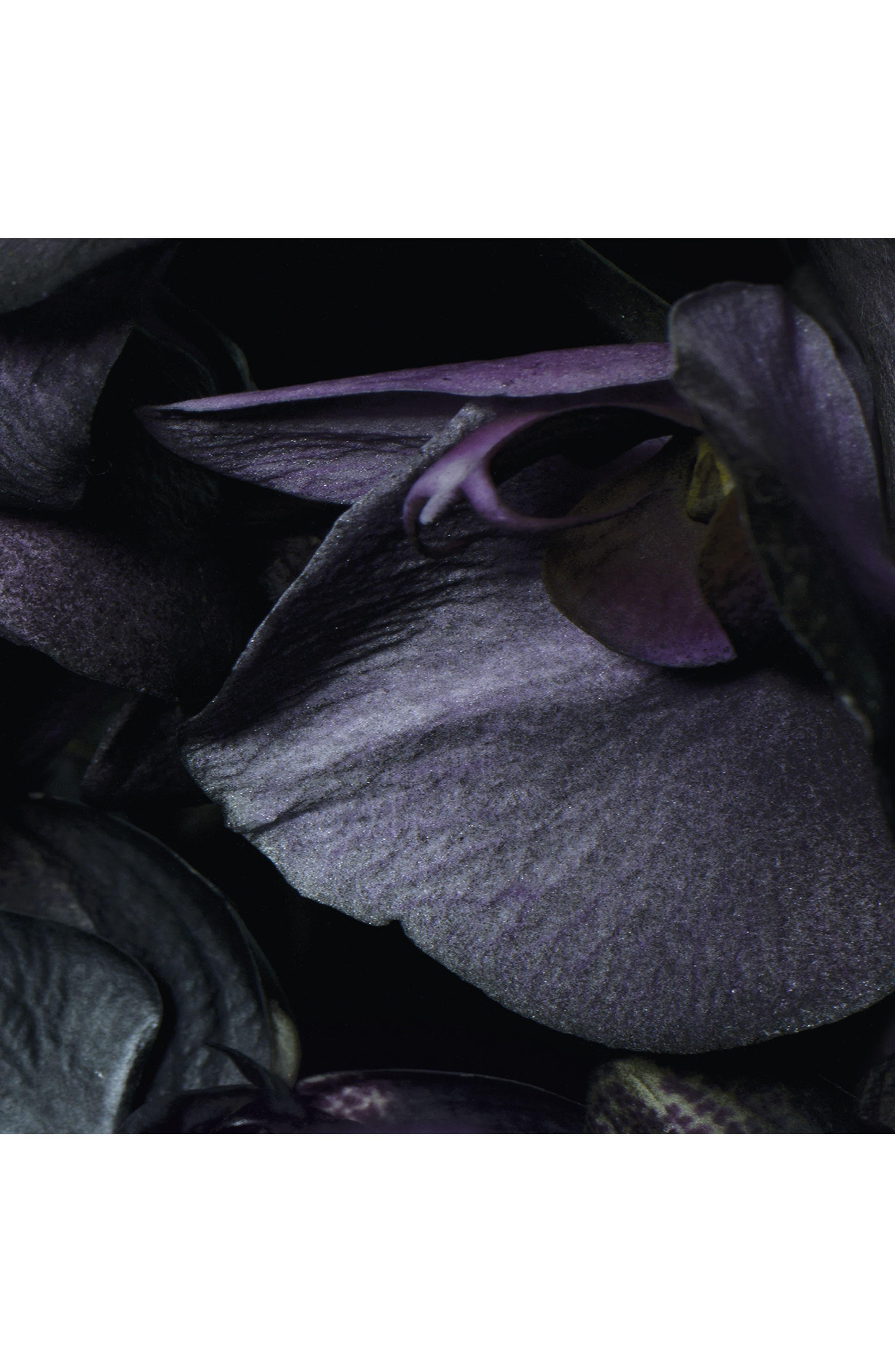 Alternate Image 3  - Jo Malone London™ Dark Amber & Ginger Lily Dry Body Oil