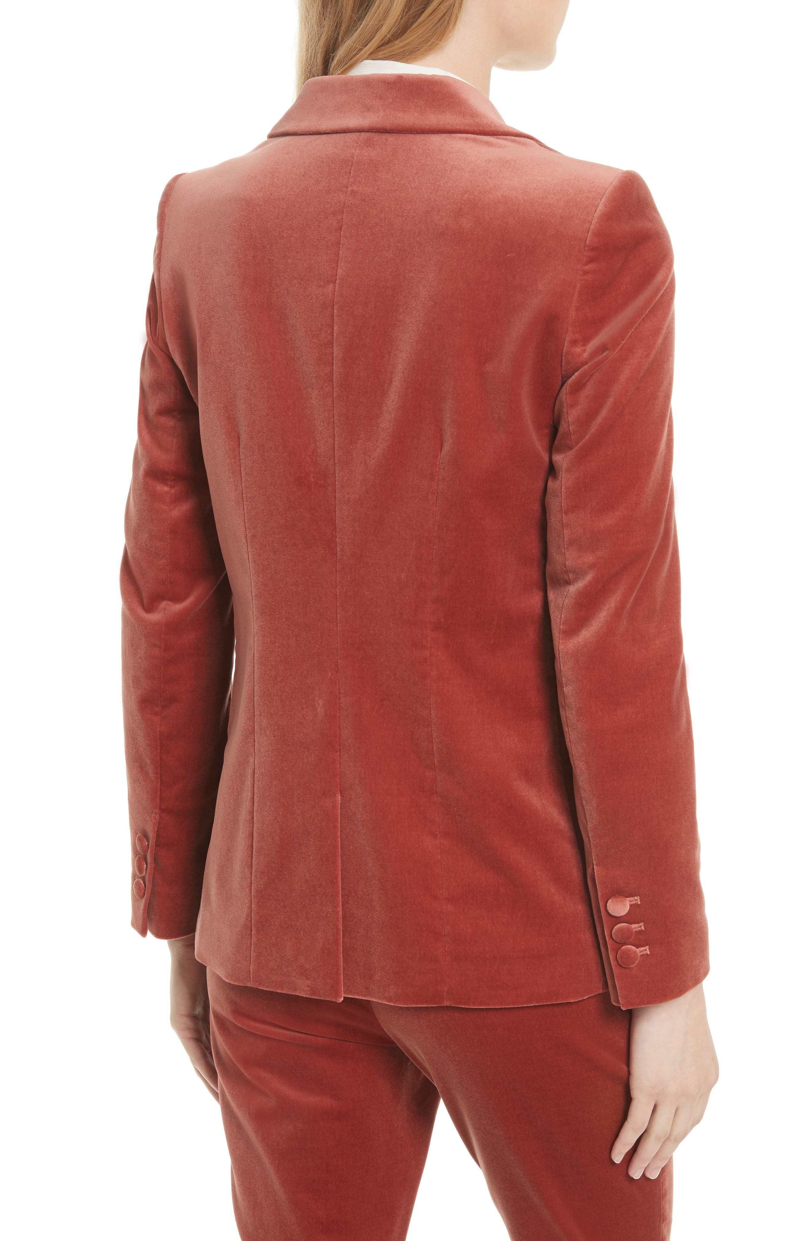 Stretch Velvet Blazer,                             Alternate thumbnail 2, color,                             Spice