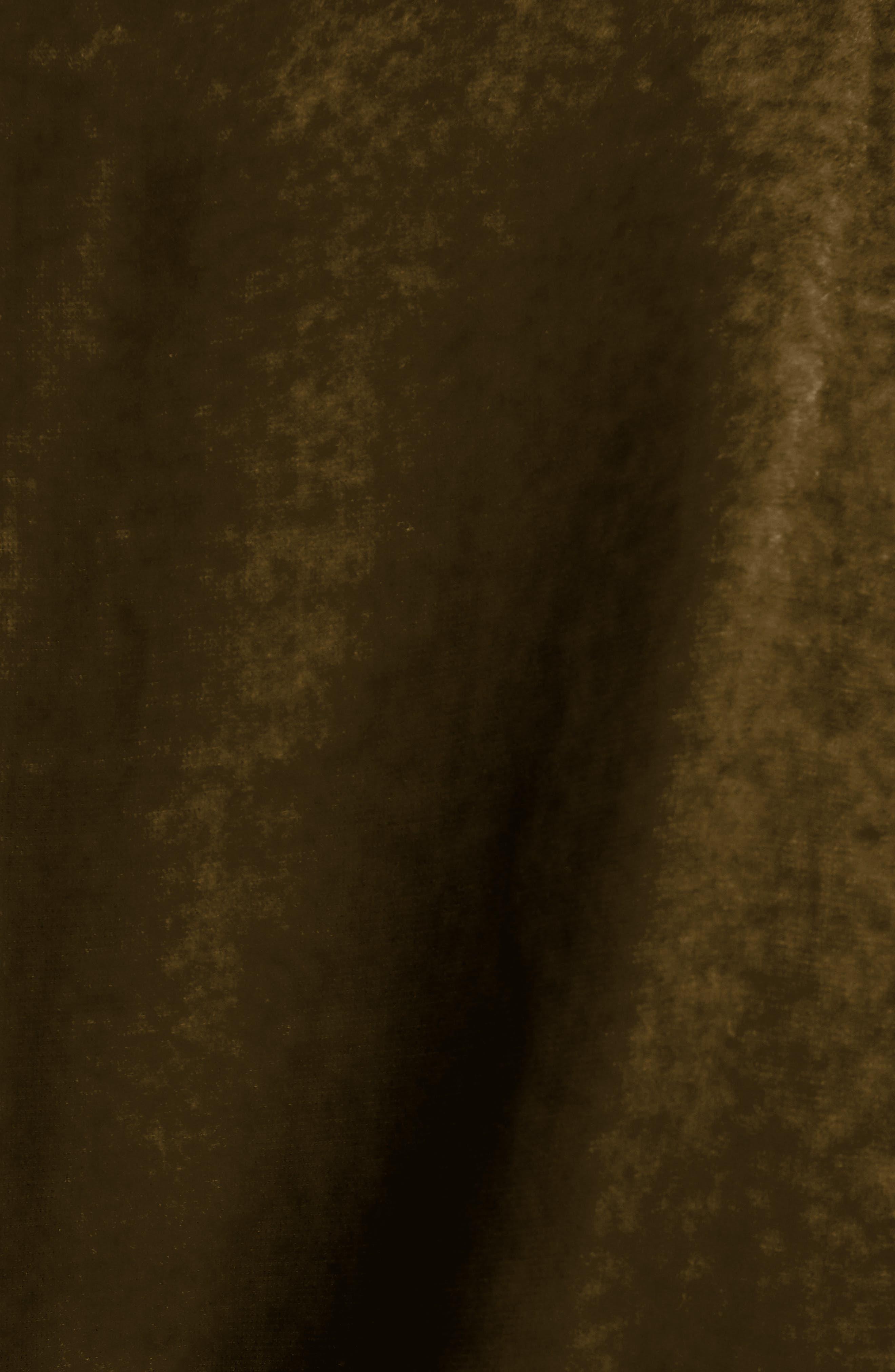 Alternate Image 3  - Dries Van Noten Gathered Velvet Dress