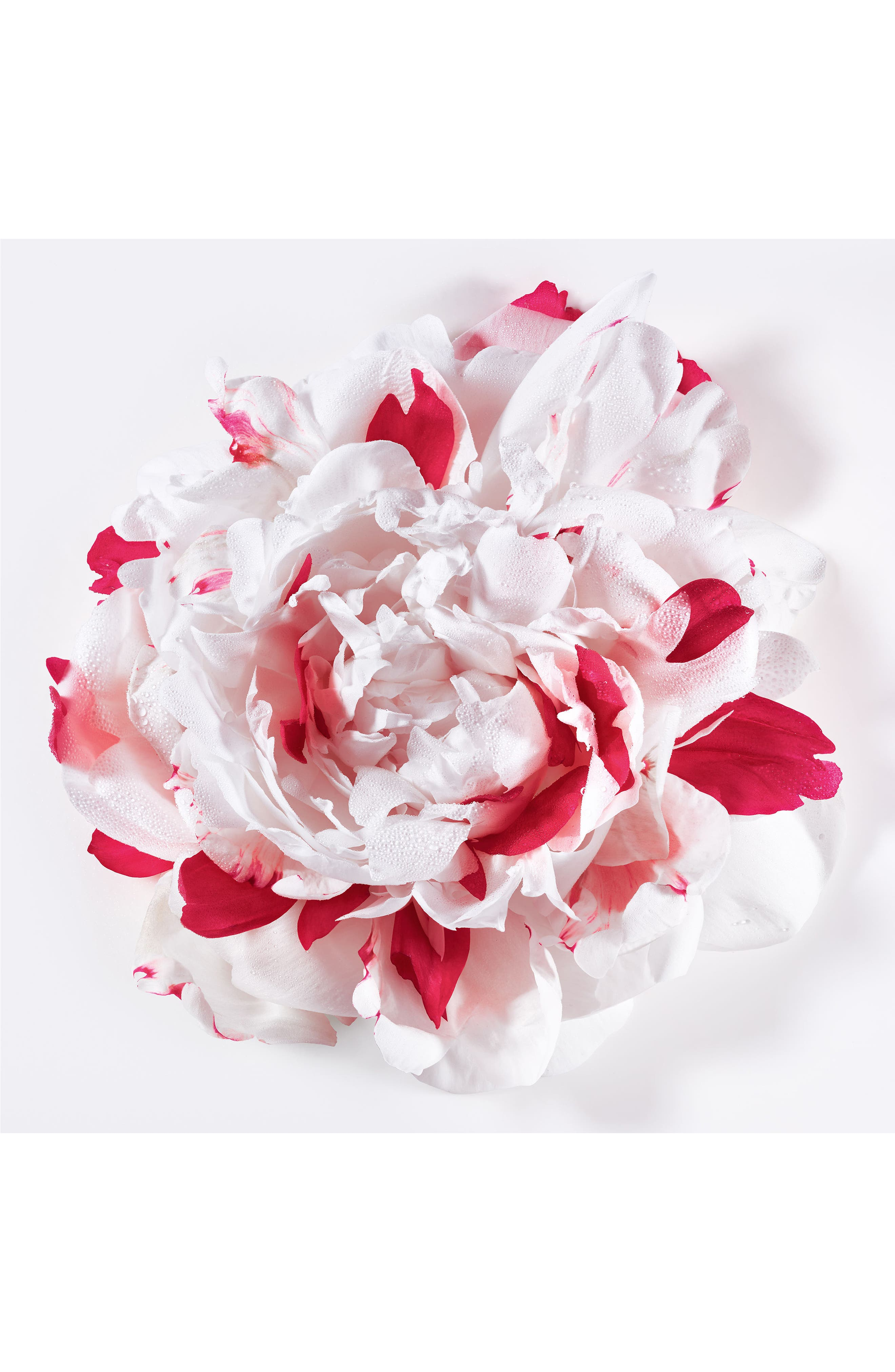 Alternate Image 7  - Dior Miss Dior Eau de Parfum
