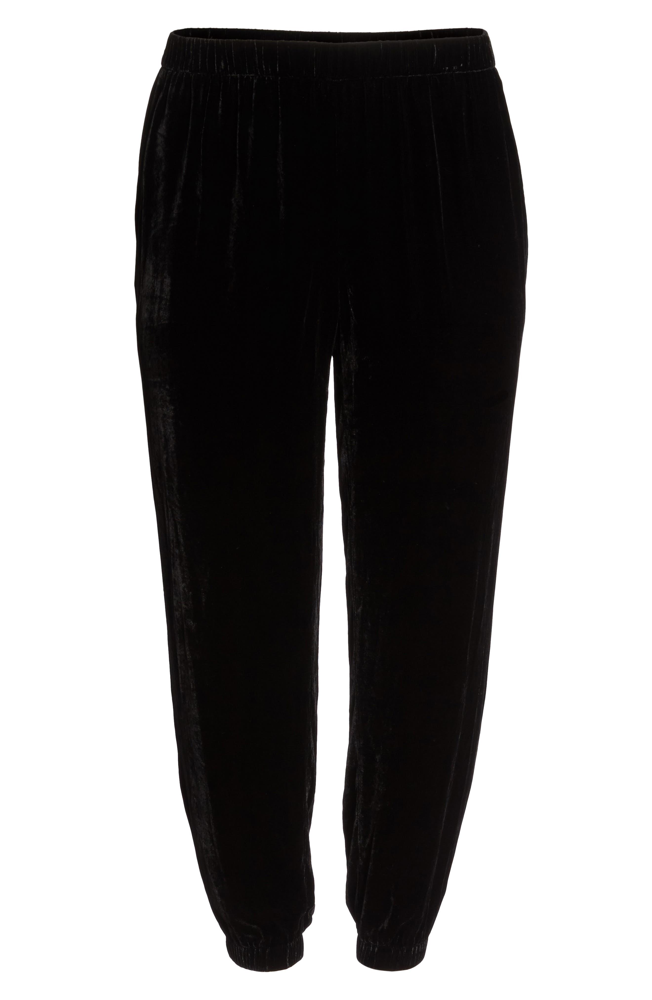 Alternate Image 6  - Eileen Fisher Velvet Ankle Pants (Plus Size)
