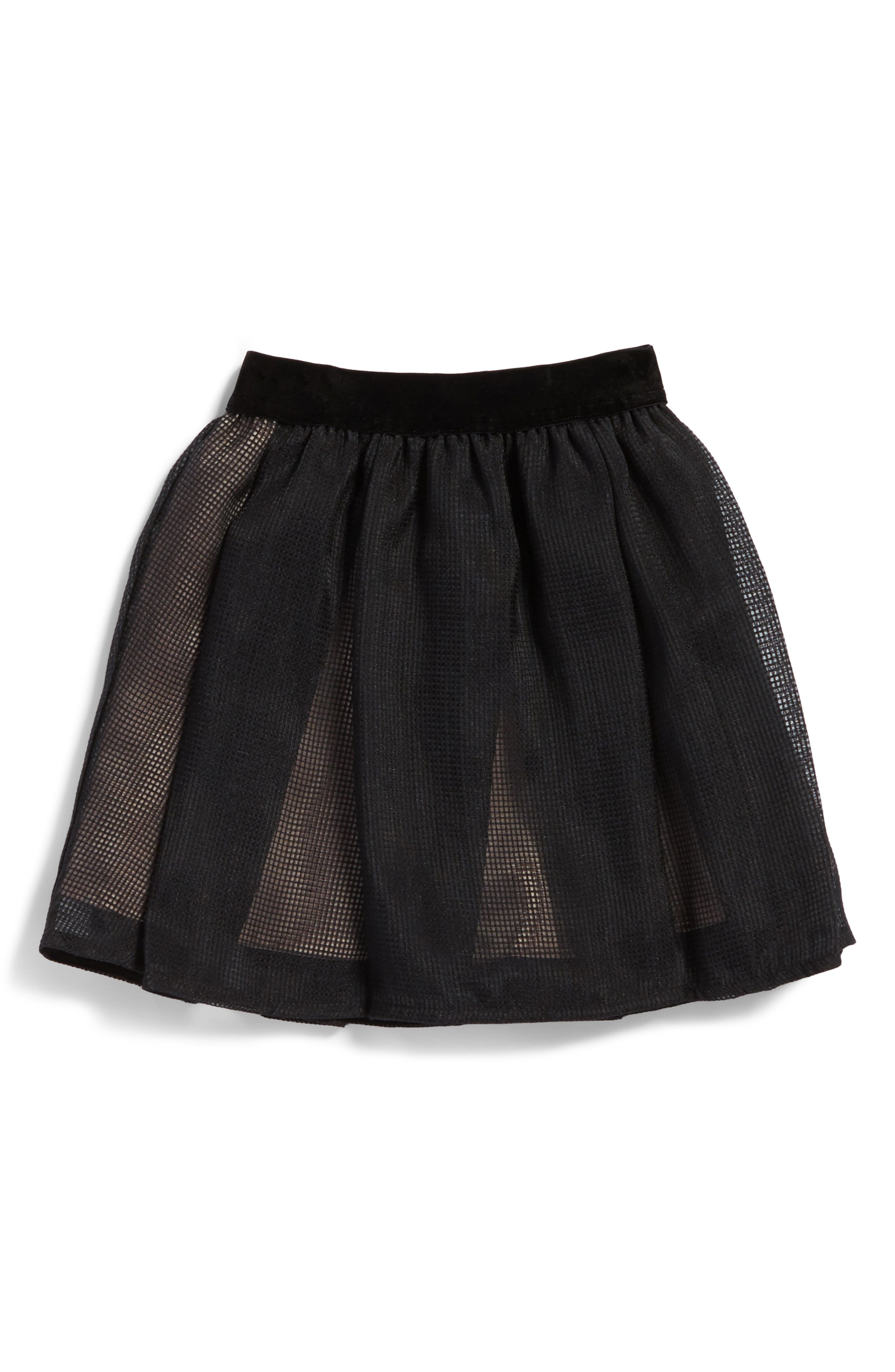 Blaire Mesh Skirt,                         Main,                         color, Black