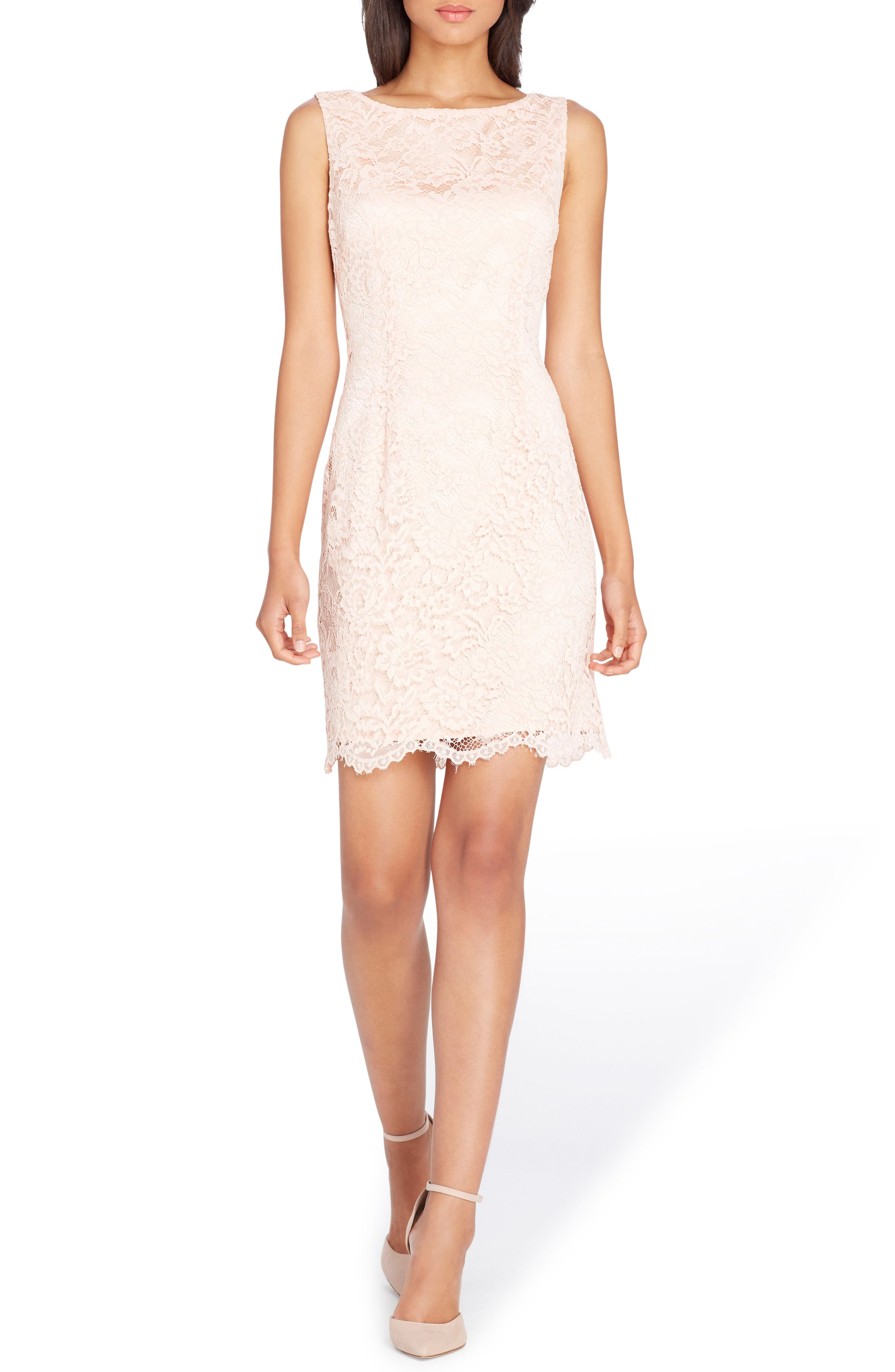 Lace Sheath Dress,                         Main,                         color, Blush Pink