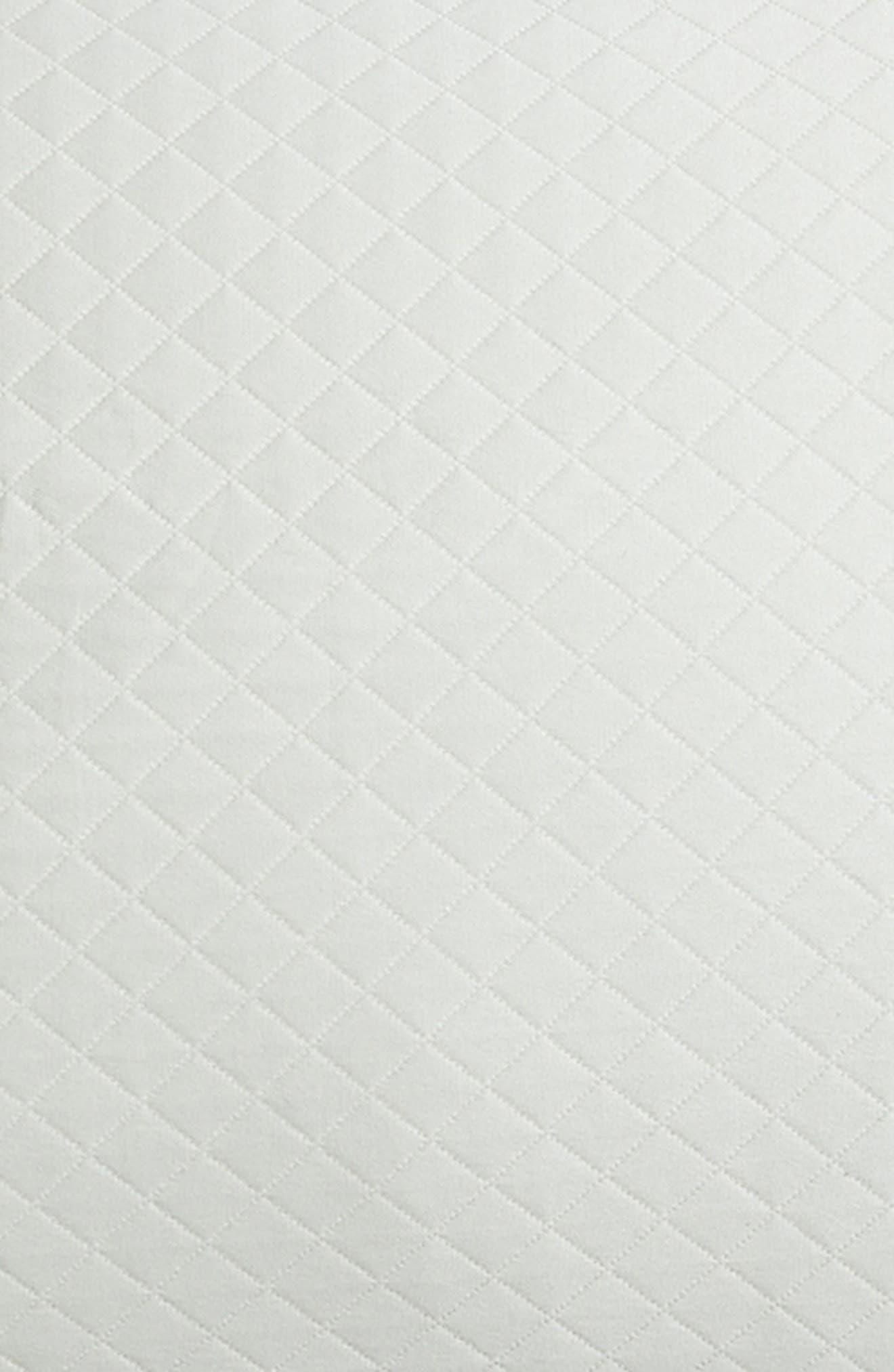 Bari Cotton Sham,                             Alternate thumbnail 3, color,                             Silversage