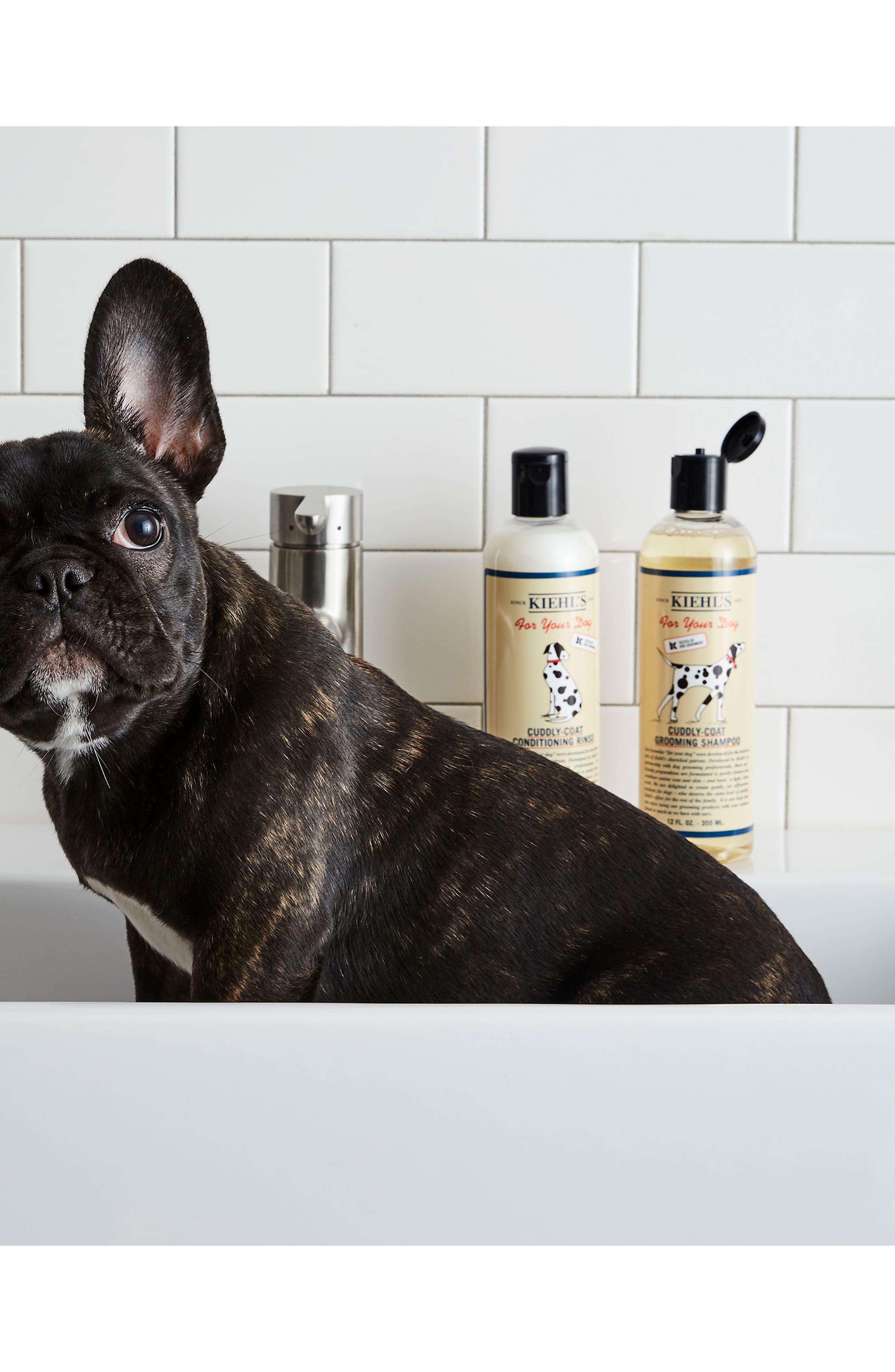 'Cuddly-Coat' Dog Grooming Shampoo,                             Alternate thumbnail 2, color,                             No Color