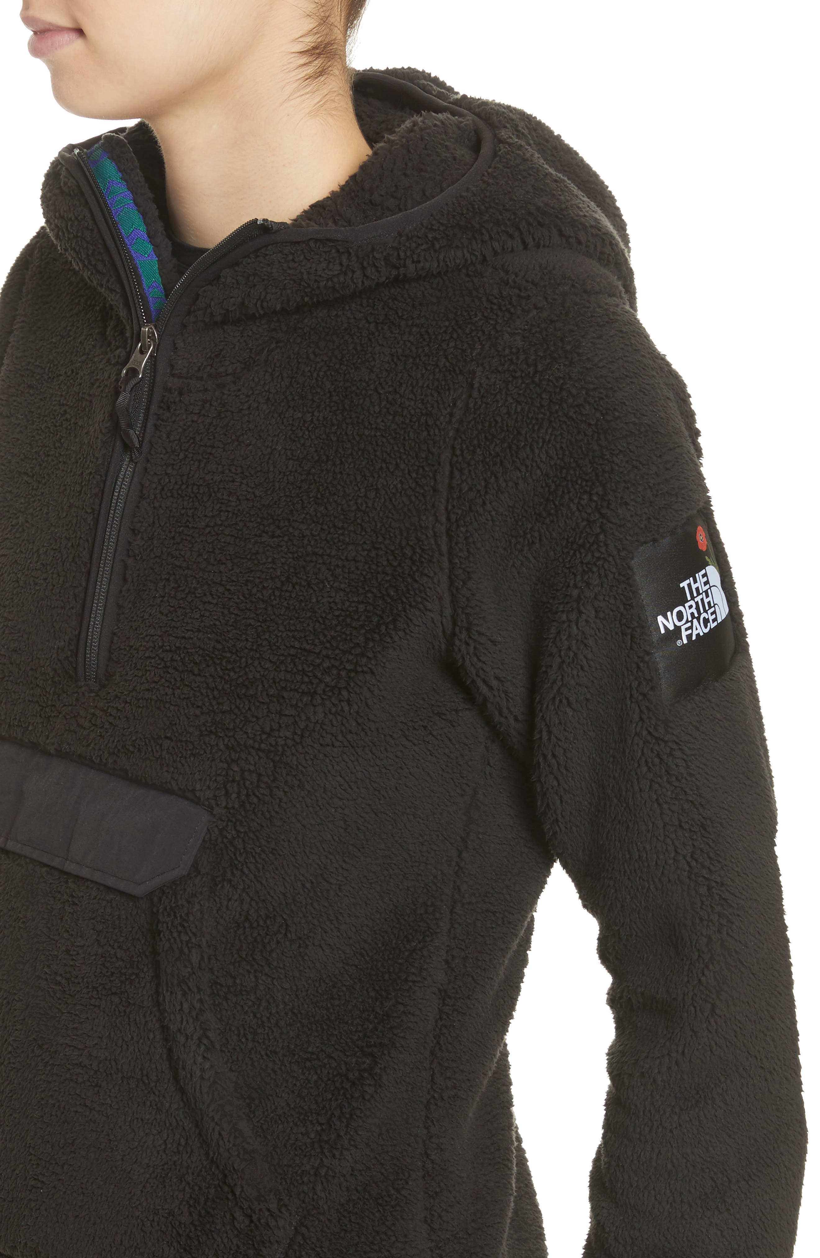 Campshire High Pile Fleece Pullover Hoodie,                             Alternate thumbnail 5, color,                             Tnf Black