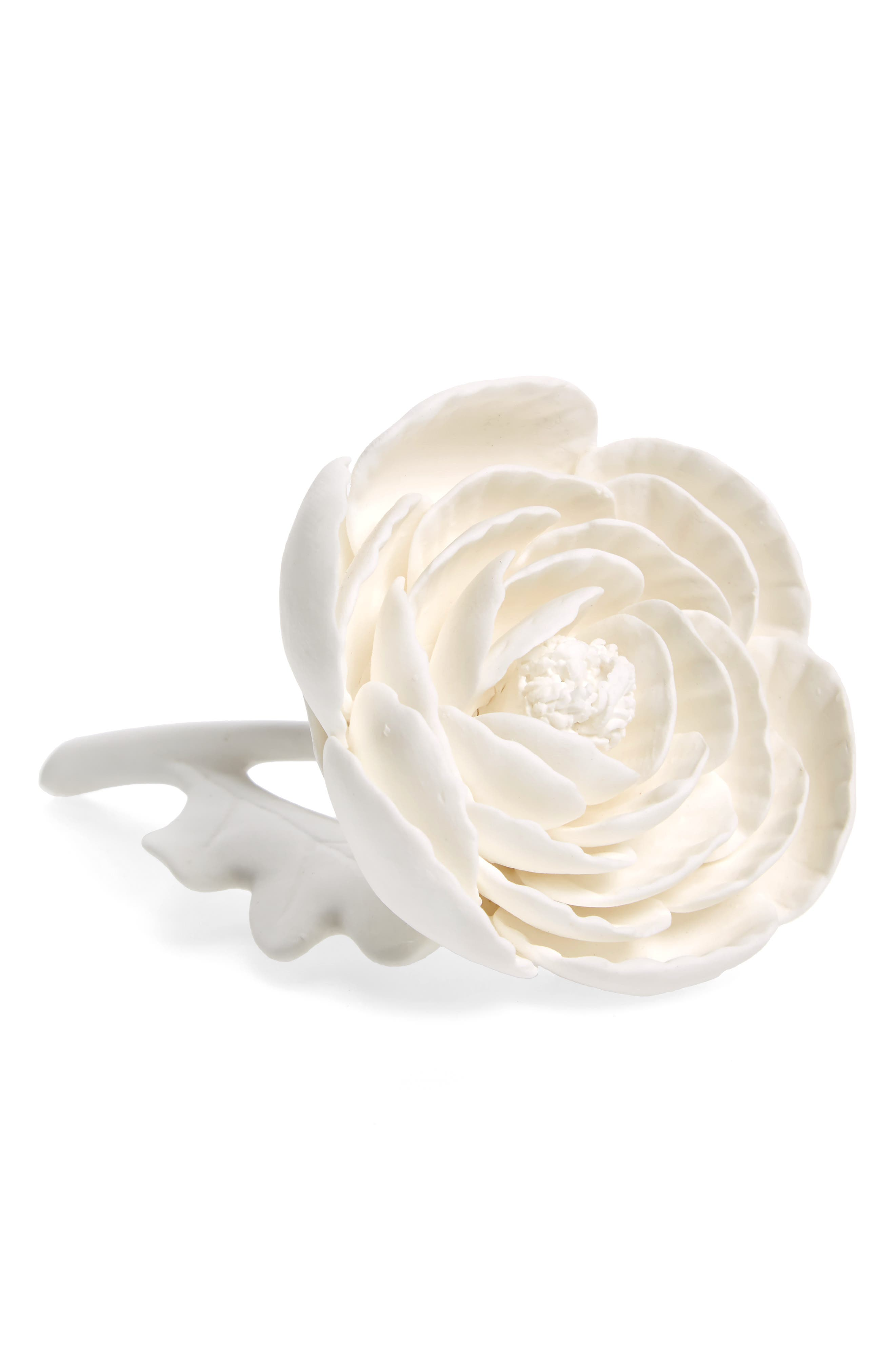 Porcelain Peony,                         Main,                         color, White