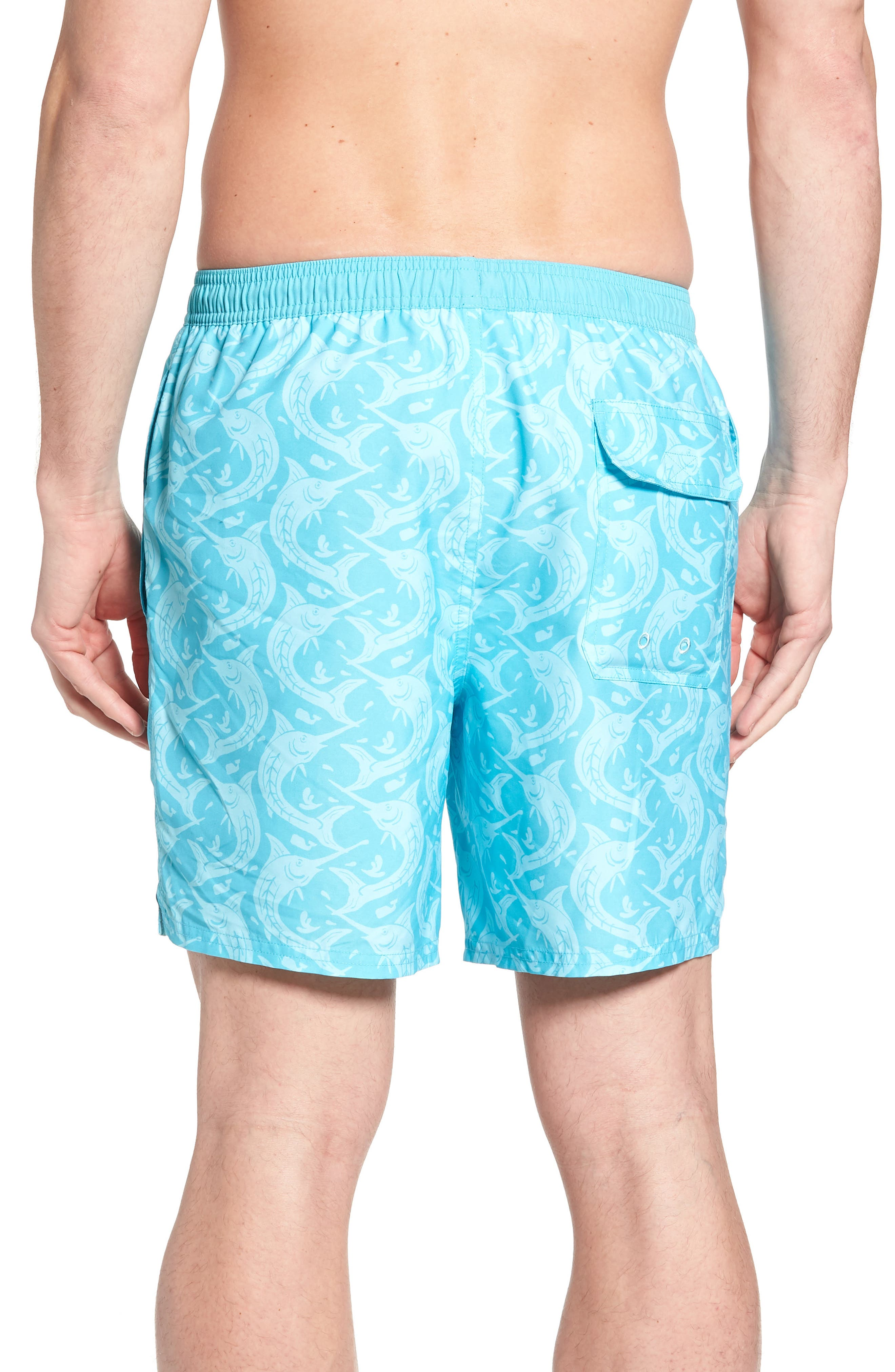 Marlin Out of Water Chappy Swim Trunks,                             Alternate thumbnail 2, color,                             Turquoise