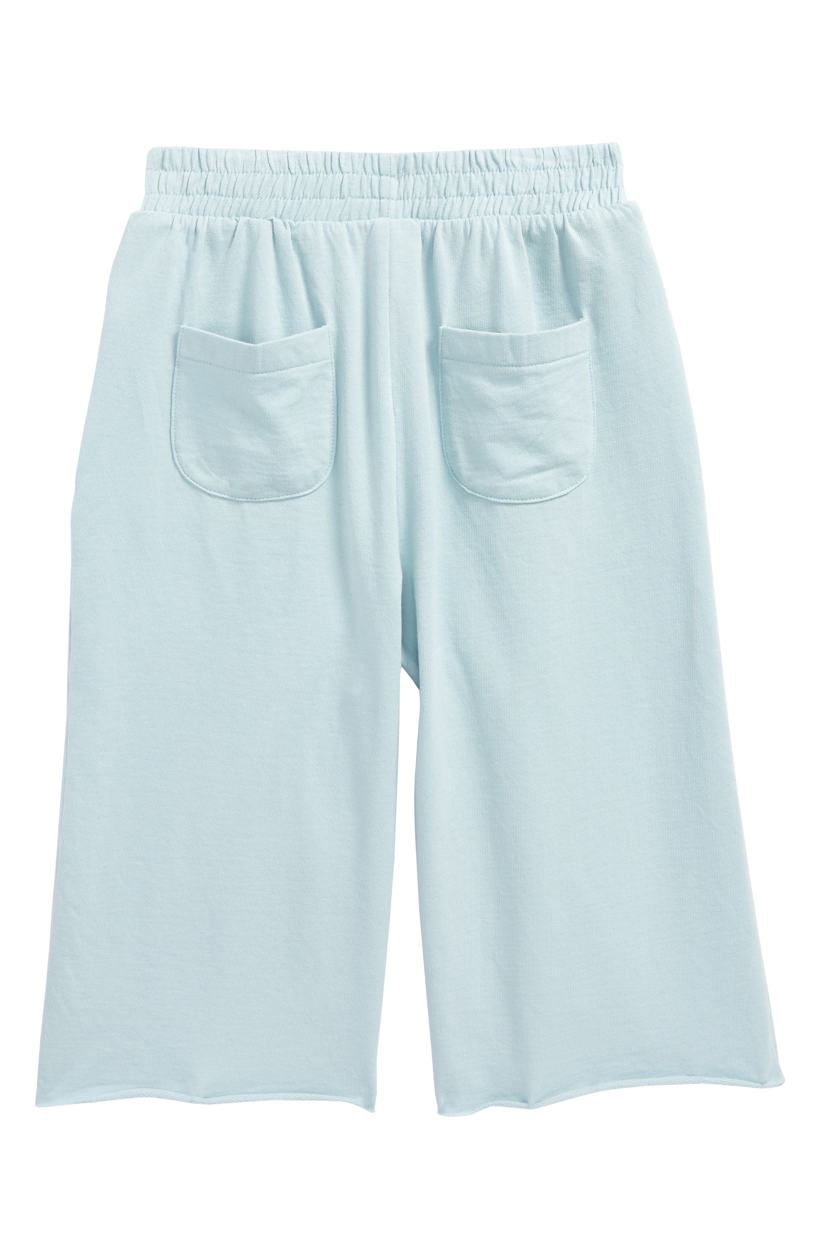 Wide Leg Sweatpants,                             Alternate thumbnail 2, color,                             Blue Sterling