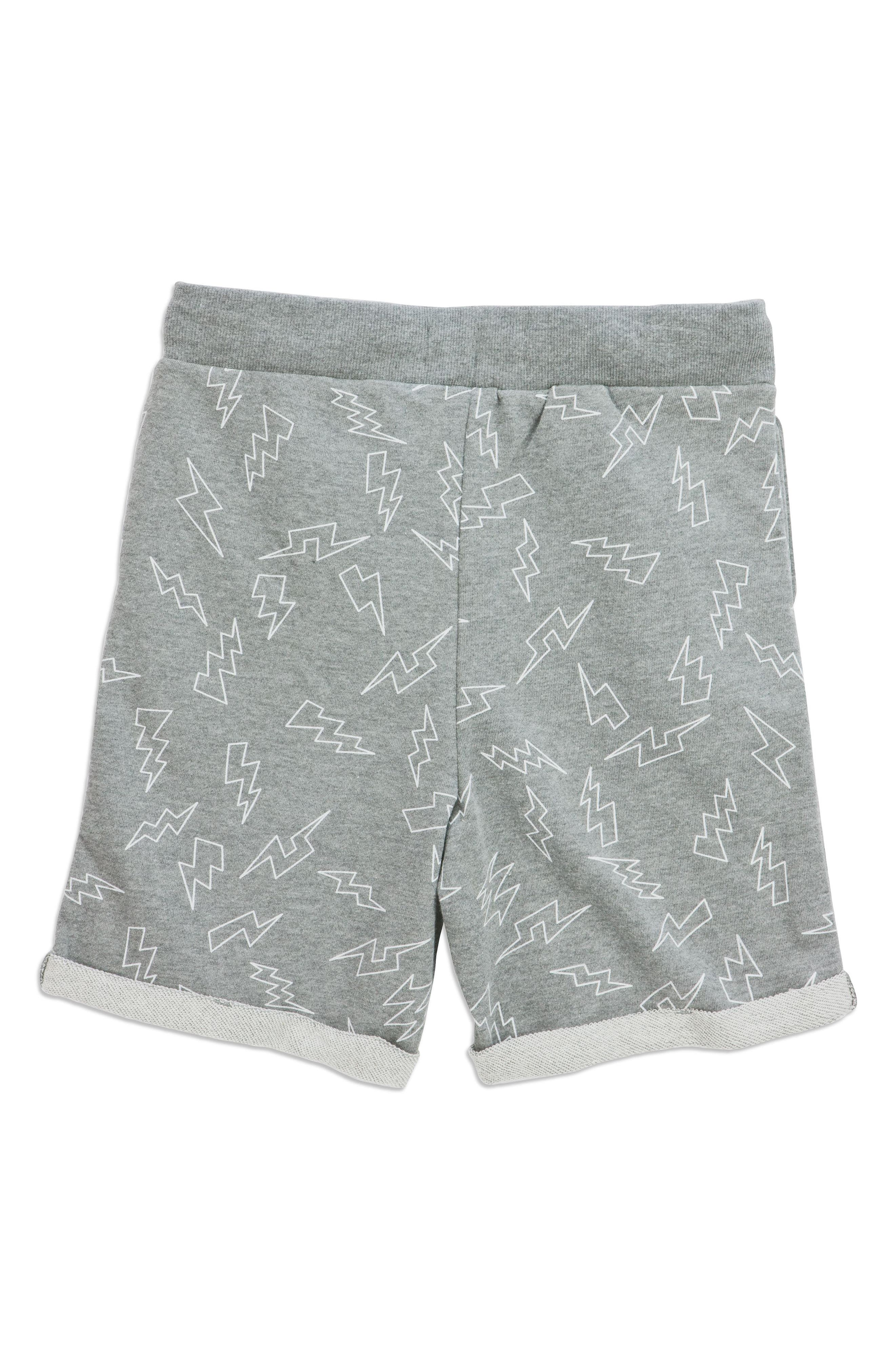 Electric Adriel Knit Shorts,                             Alternate thumbnail 2, color,                             Grey