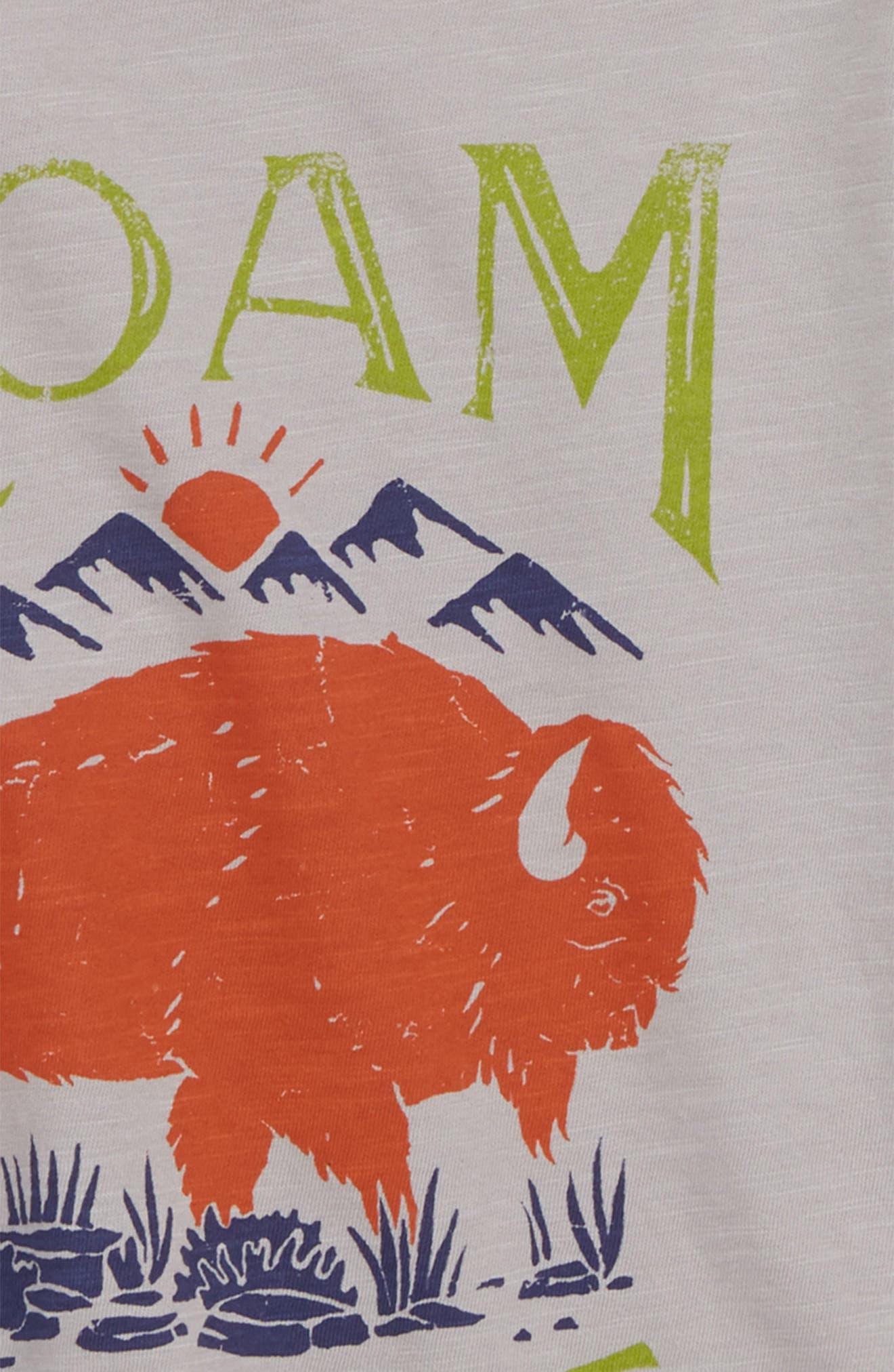 Roam Free Graphic T-Shirt,                             Alternate thumbnail 2, color,                             Grey