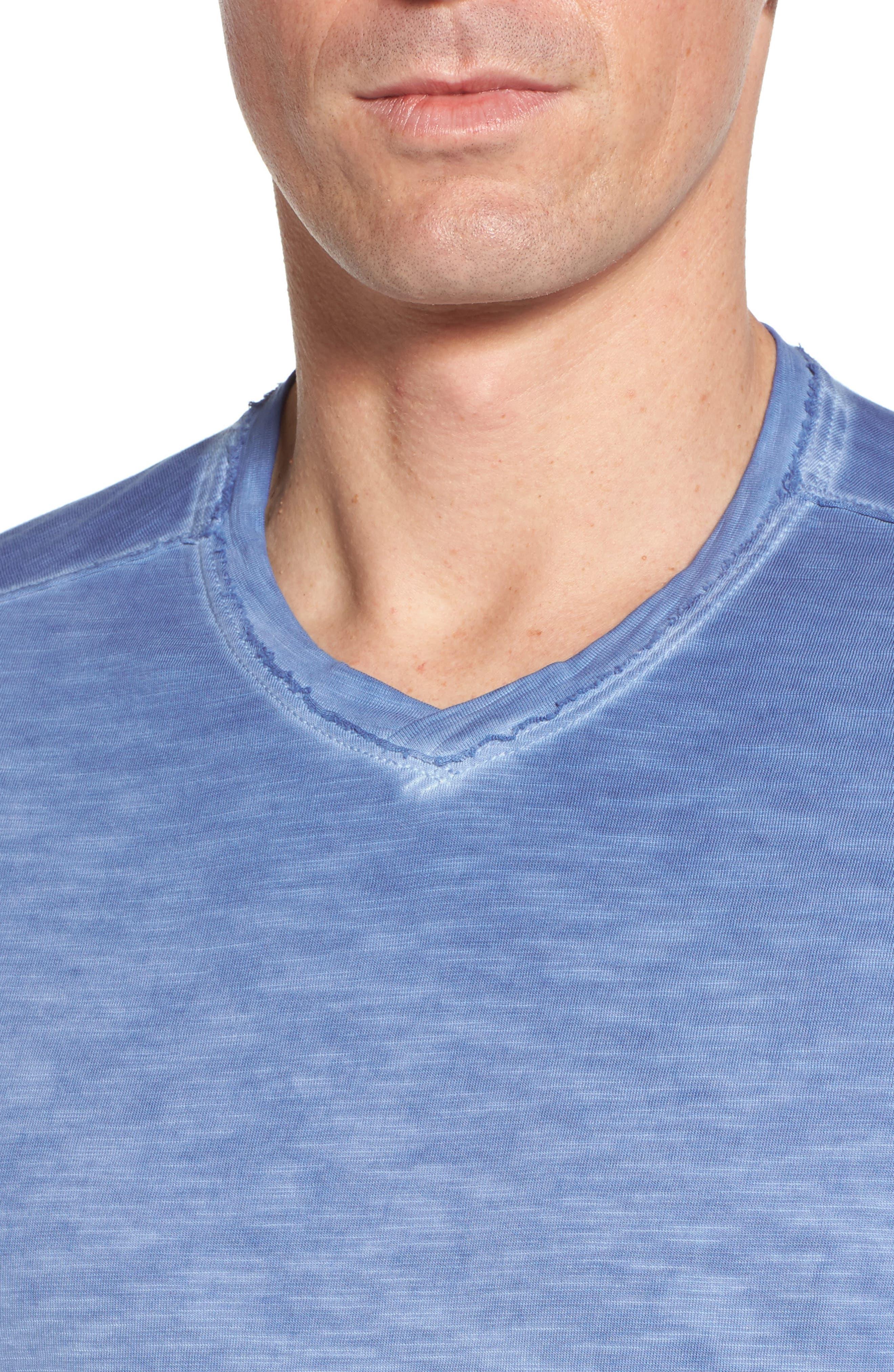 Suncoast Shores V-Neck T-Shirt,                             Alternate thumbnail 4, color,                             Dockside Blue