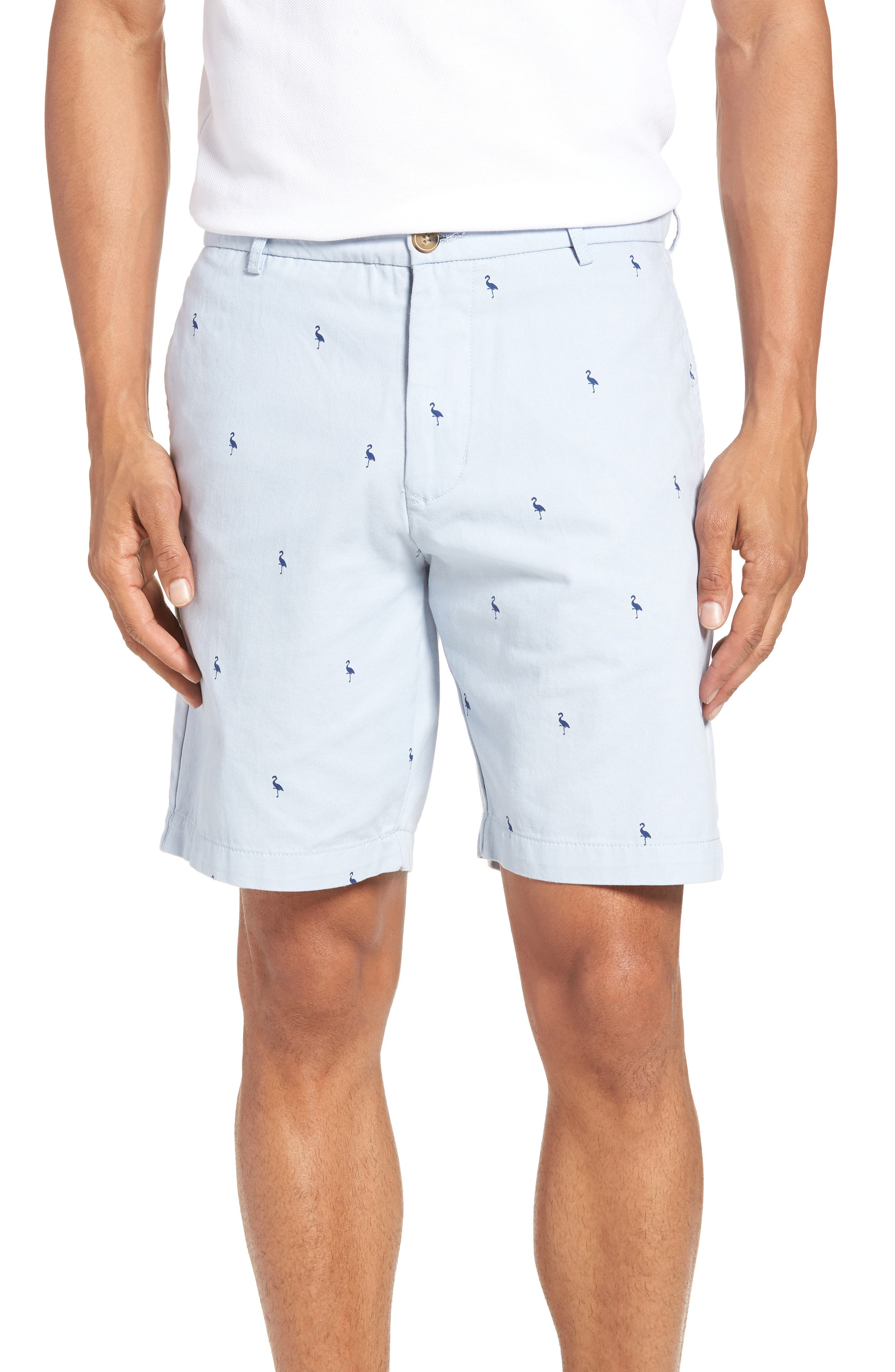 Aiden Bird Regular Fit Chino Shorts,                             Main thumbnail 1, color,                             Light Blue