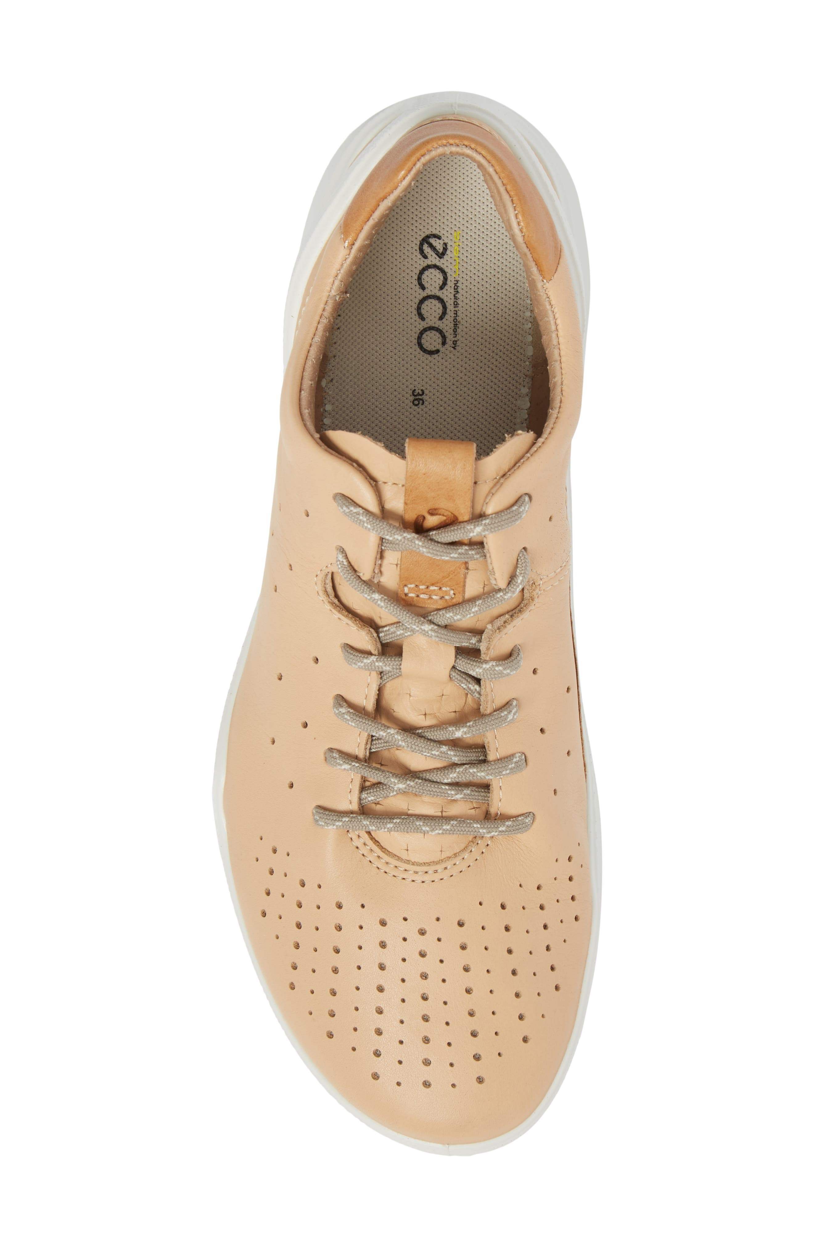 Biom Street Sneaker,                             Alternate thumbnail 5, color,                             Powder Leather