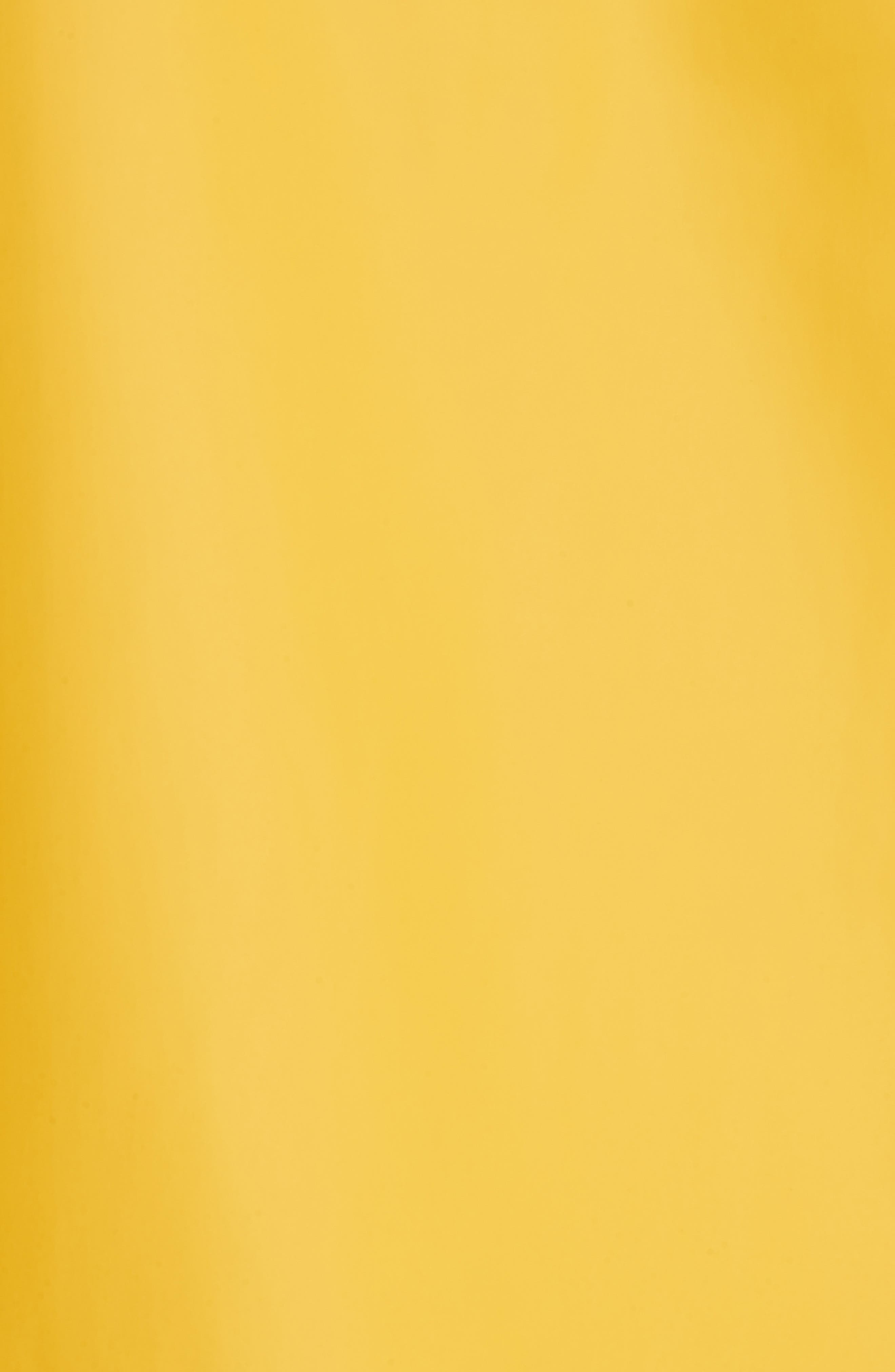 Erna Raincoat,                             Alternate thumbnail 5, color,                             Aspen Gold