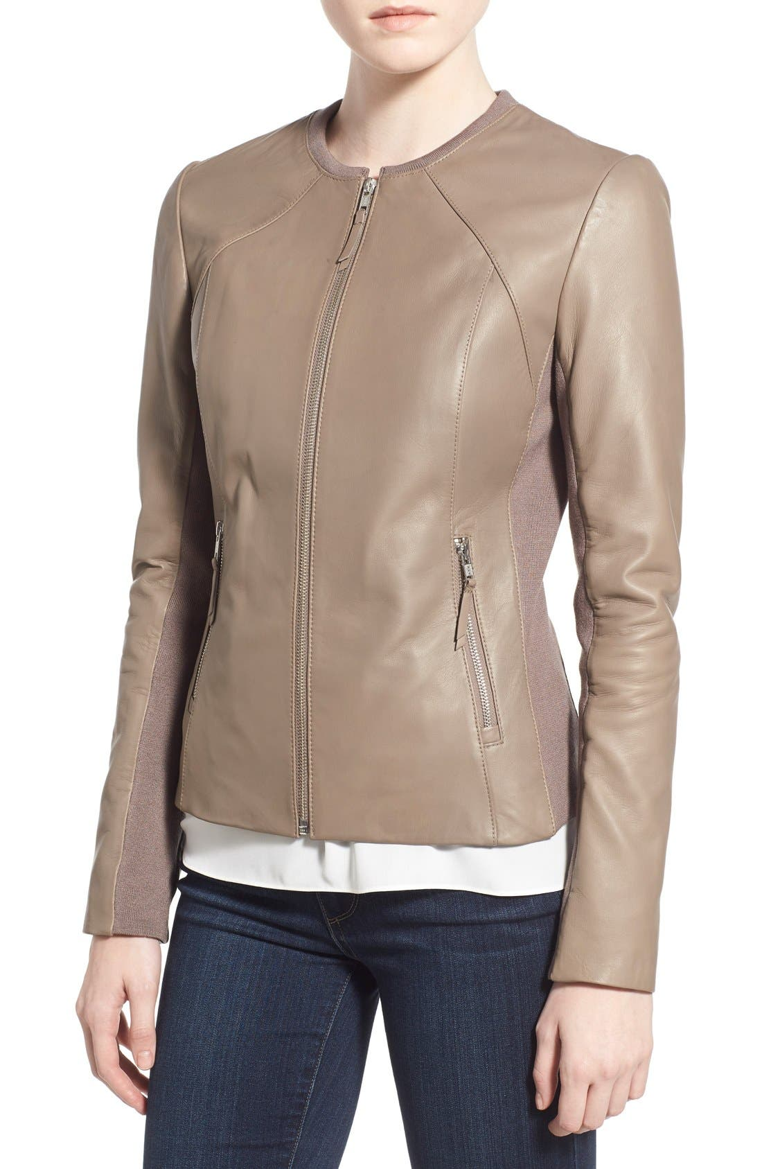 Alternate Image 4  - Soia & Kyo Slim Fit Zip Front Leather Jacket