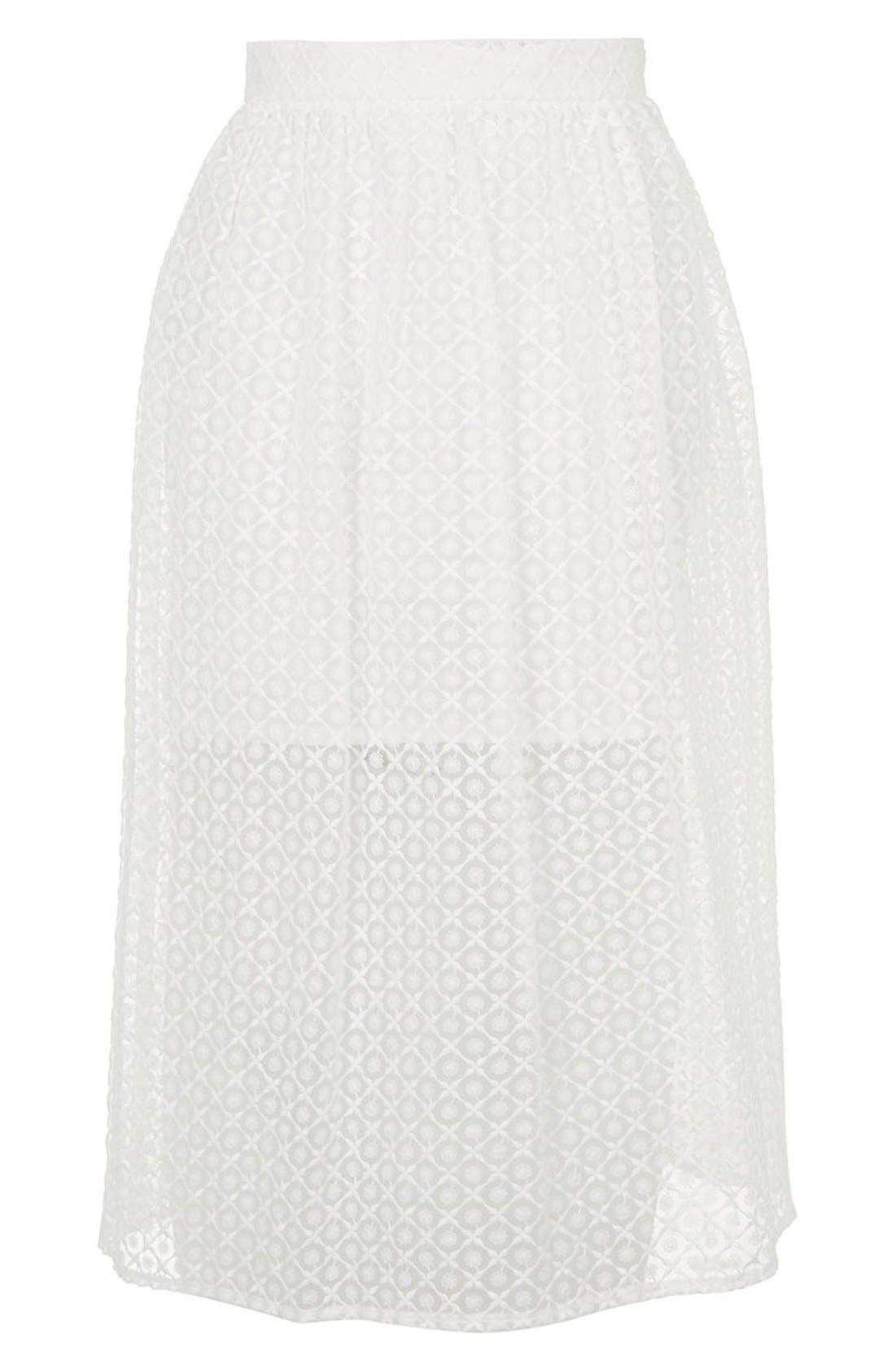 Alternate Image 4  - Topshop Floral Embroidered Organza Midi Skirt