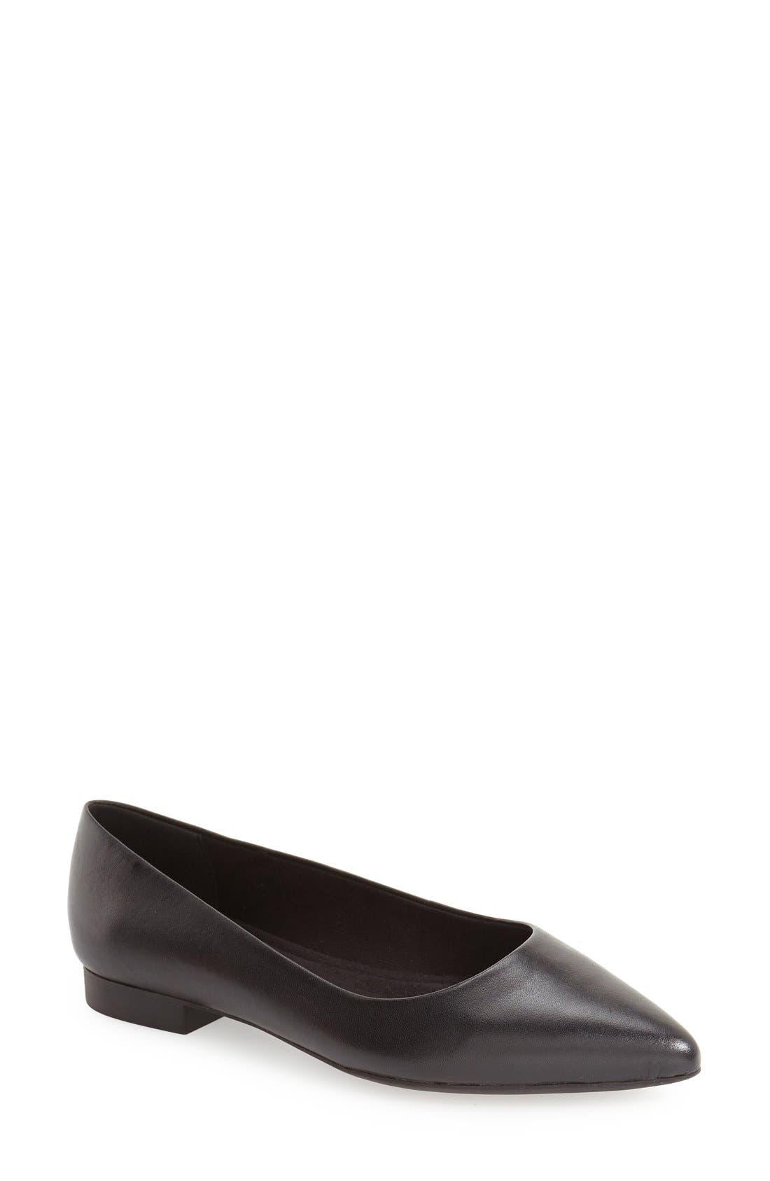 'Vivien' Pointy Toe Flat,                             Main thumbnail 1, color,                             Black Leather