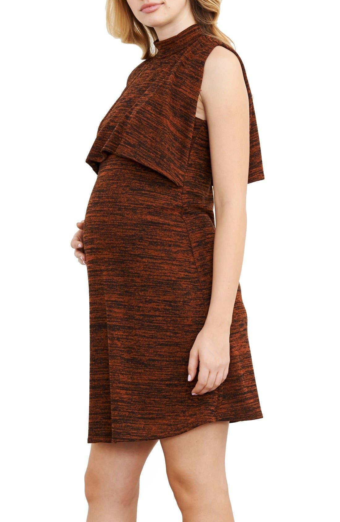 Maternity/Nursing Knit Dress,                         Main,                         color, Rust