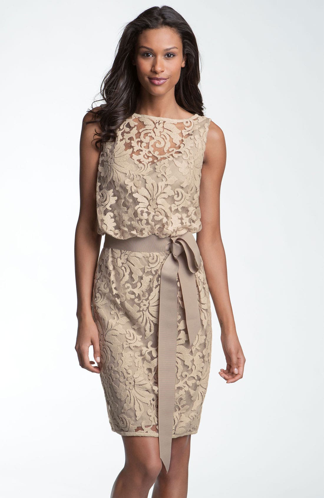 Alternate Image 1 Selected - Tadashi Shoji Lace Overlay Ribbon Dress