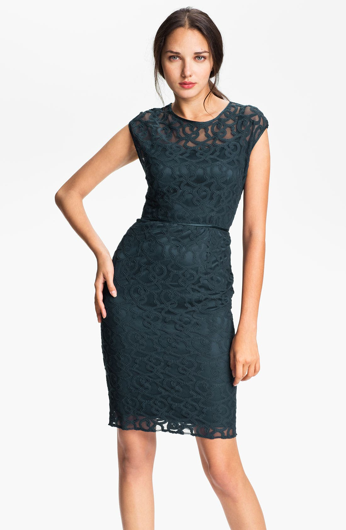 Alternate Image 1 Selected - Adrianna Papell Lace & Mesh Sheath Dress