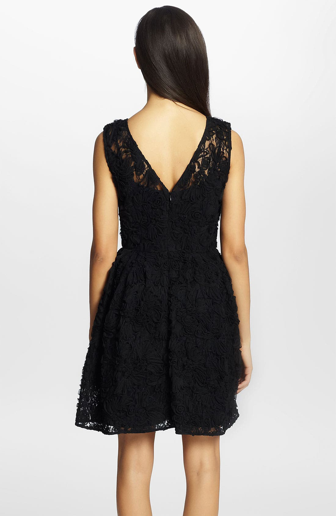 Alternate Image 2  - Cynthia Steffe 'Trixie' Lace Fit & Flare Dress