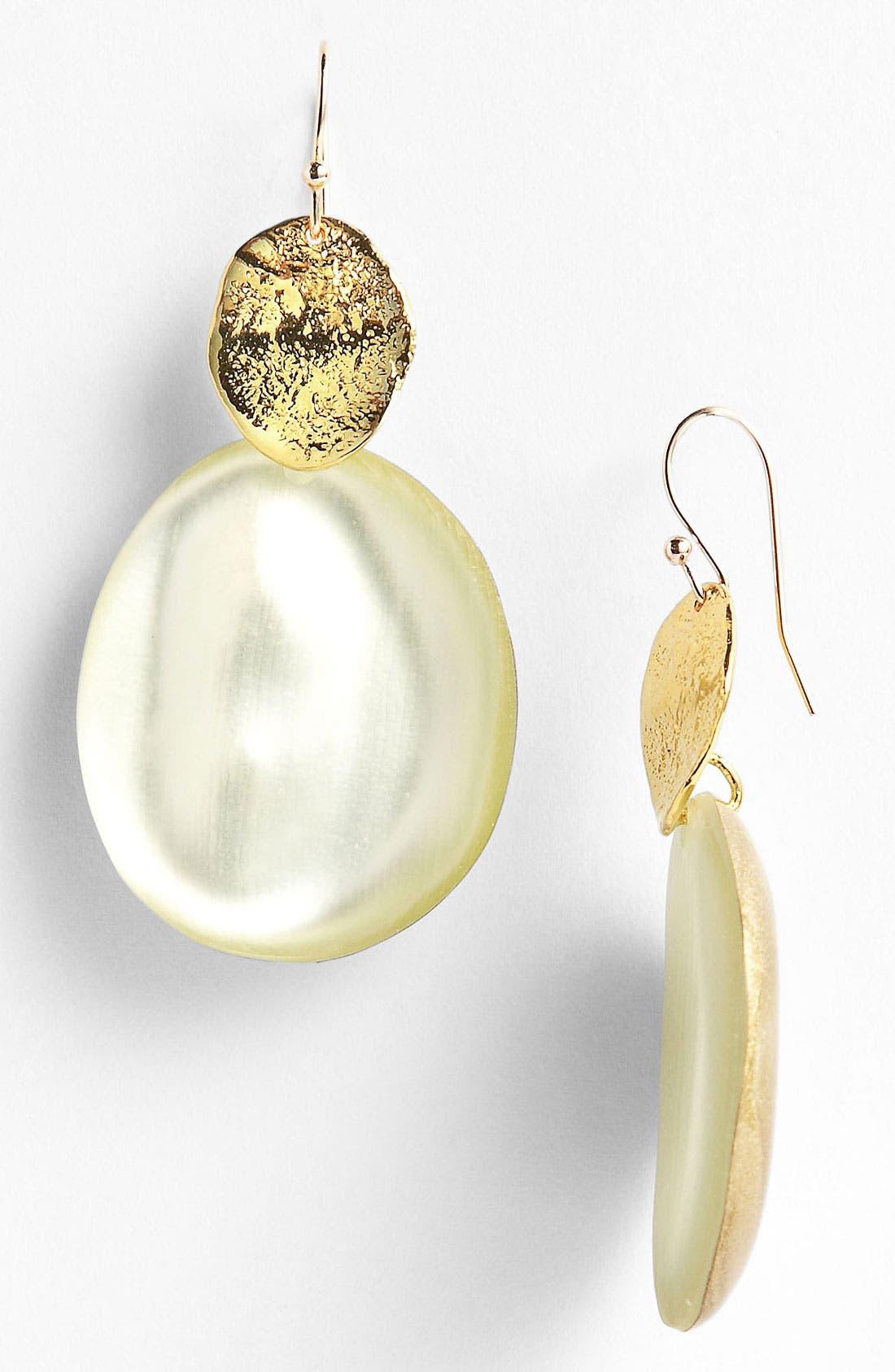 Alternate Image 1 Selected - Alexis Bittar 'Lucite®' Drop Earrings