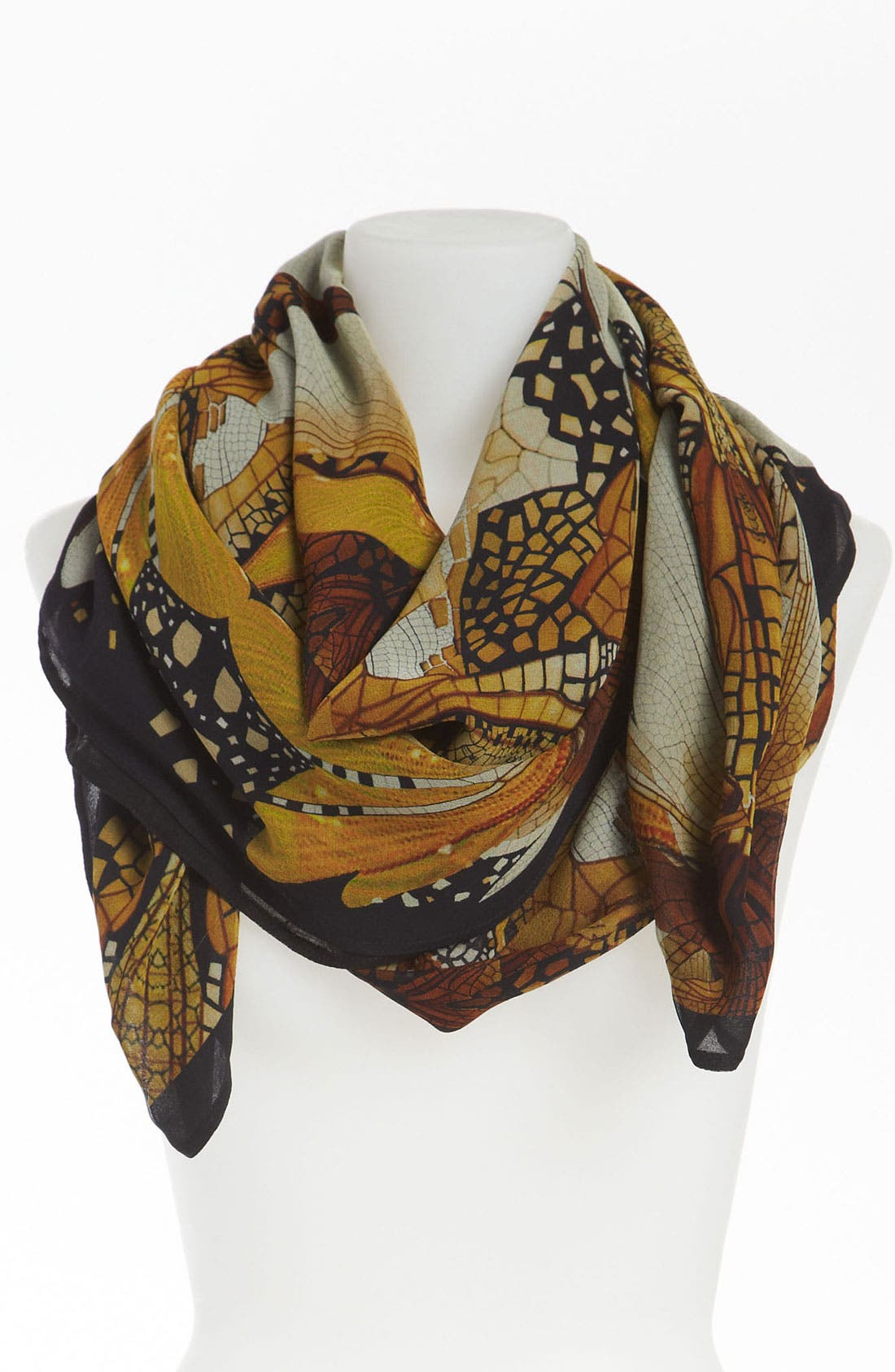 Alternate Image 1 Selected - Alexander McQueen Silk Georgette Shawl