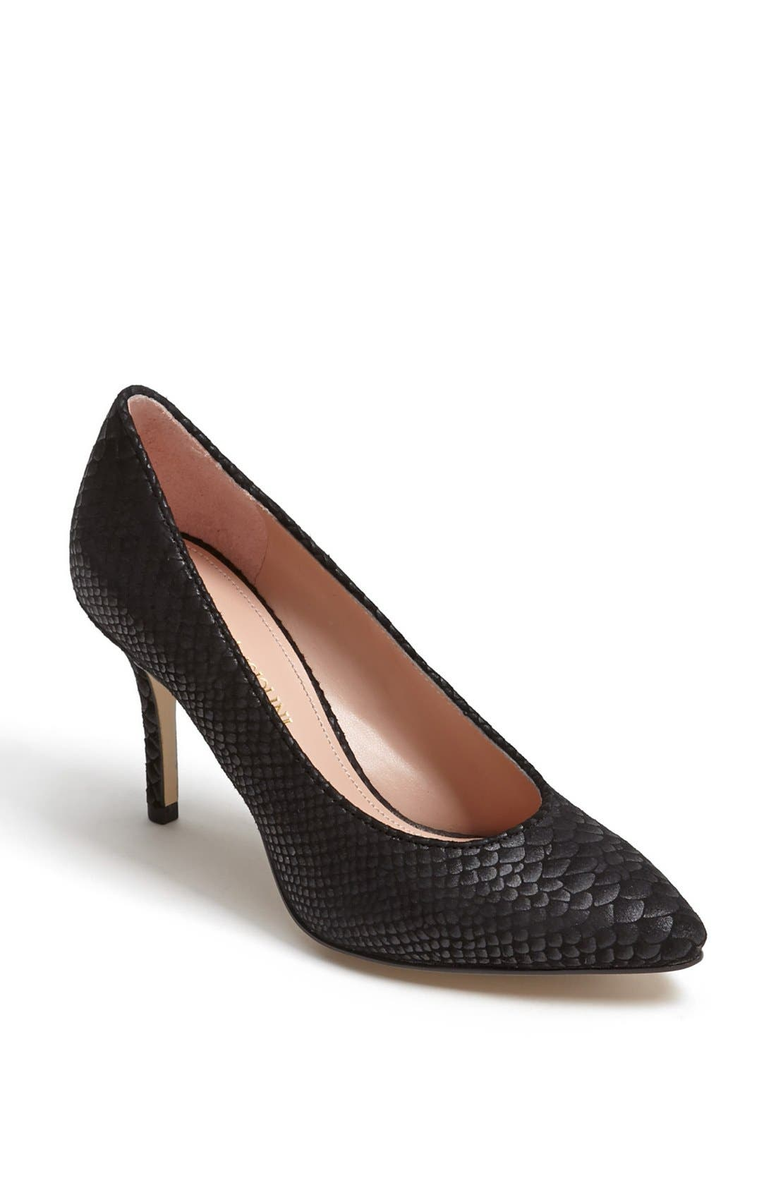 Alternate Image 1 Selected - Enzo Angiolini 'Cheylo' Pump