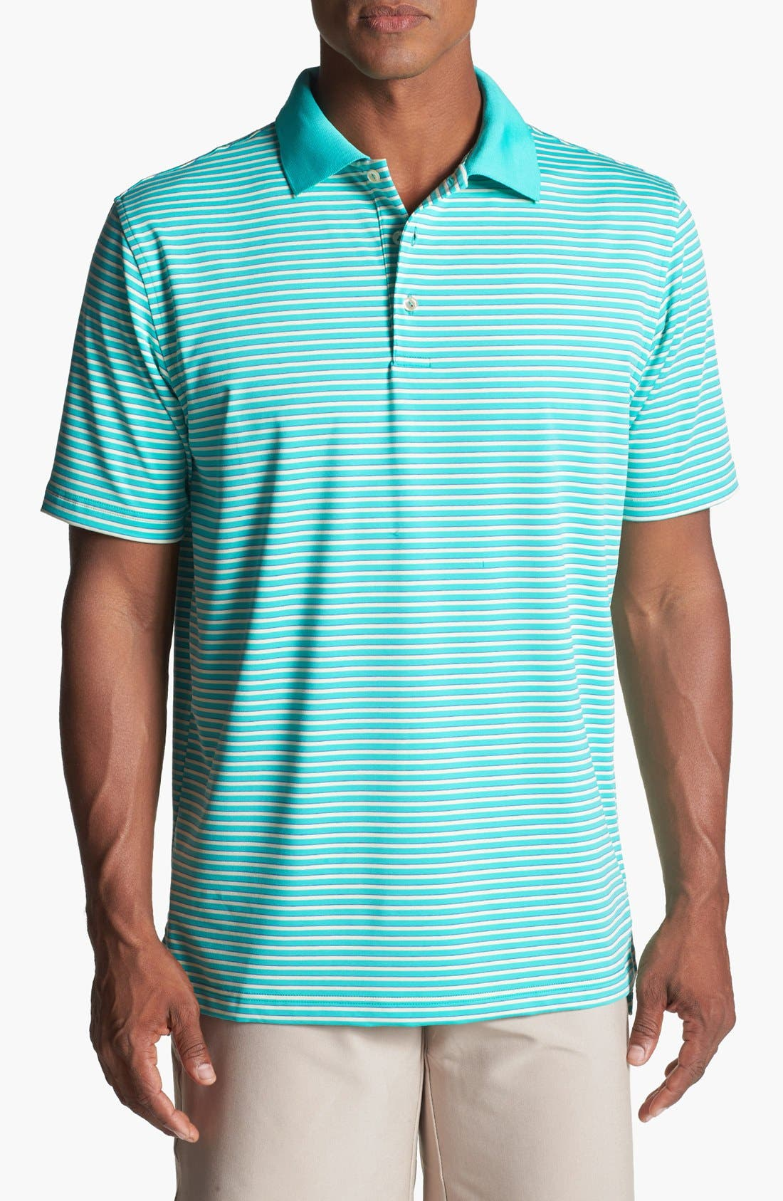 Alternate Image 1 Selected - Peter Millar Stripe Performance Polo