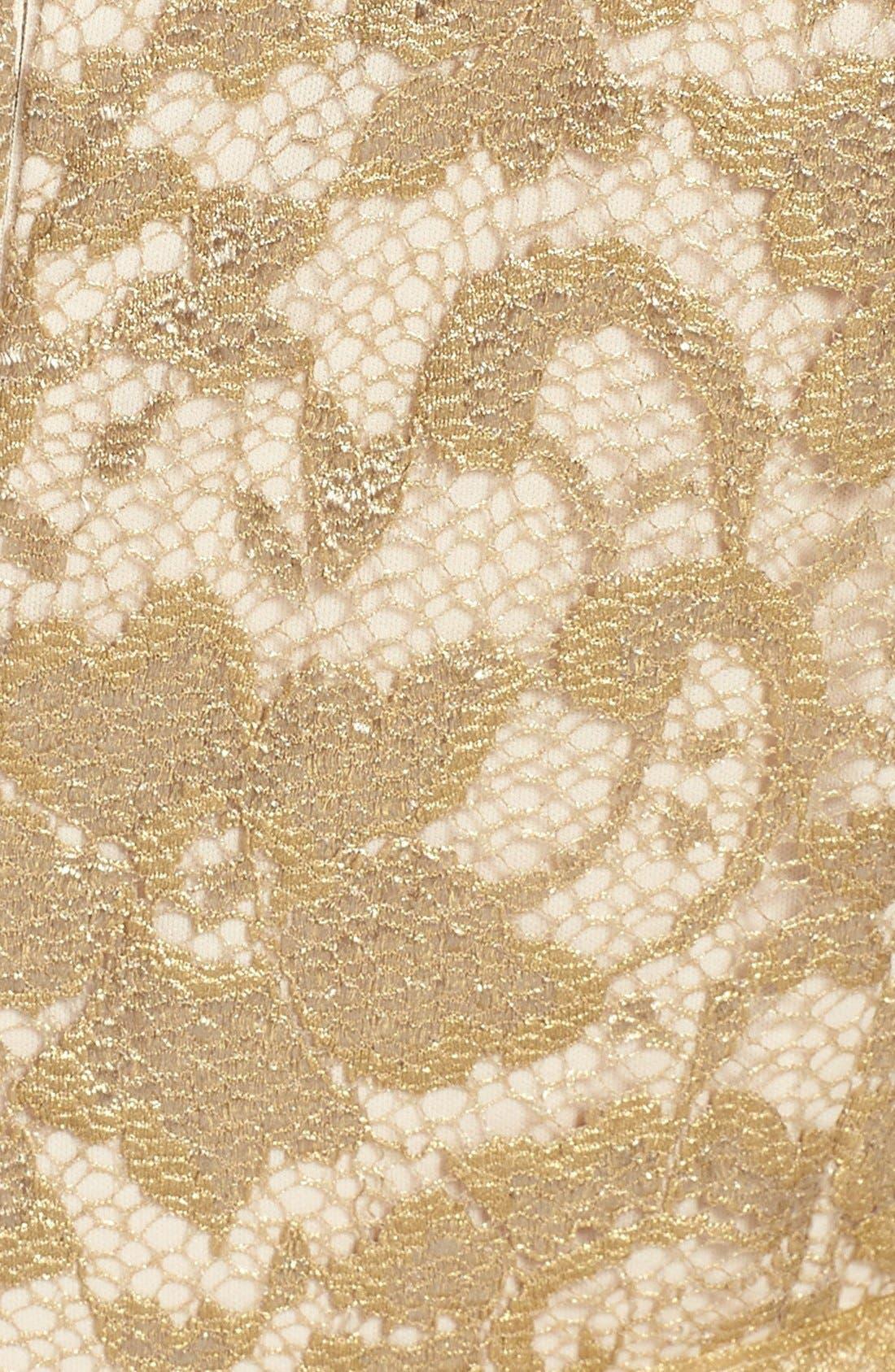 Alternate Image 3  - Alex Evenings Illusion Sleeve Lace Dress (Petite)