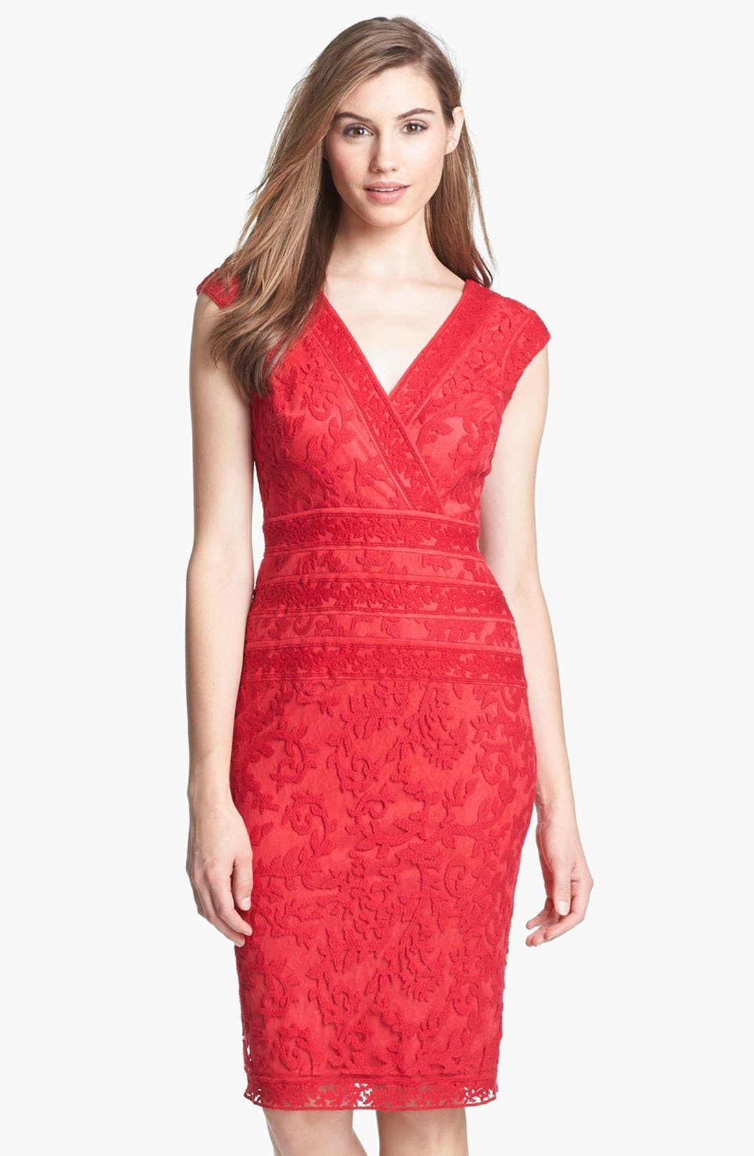 Alternate Image 1 Selected - Tadashi Shoji Embroidered Dress