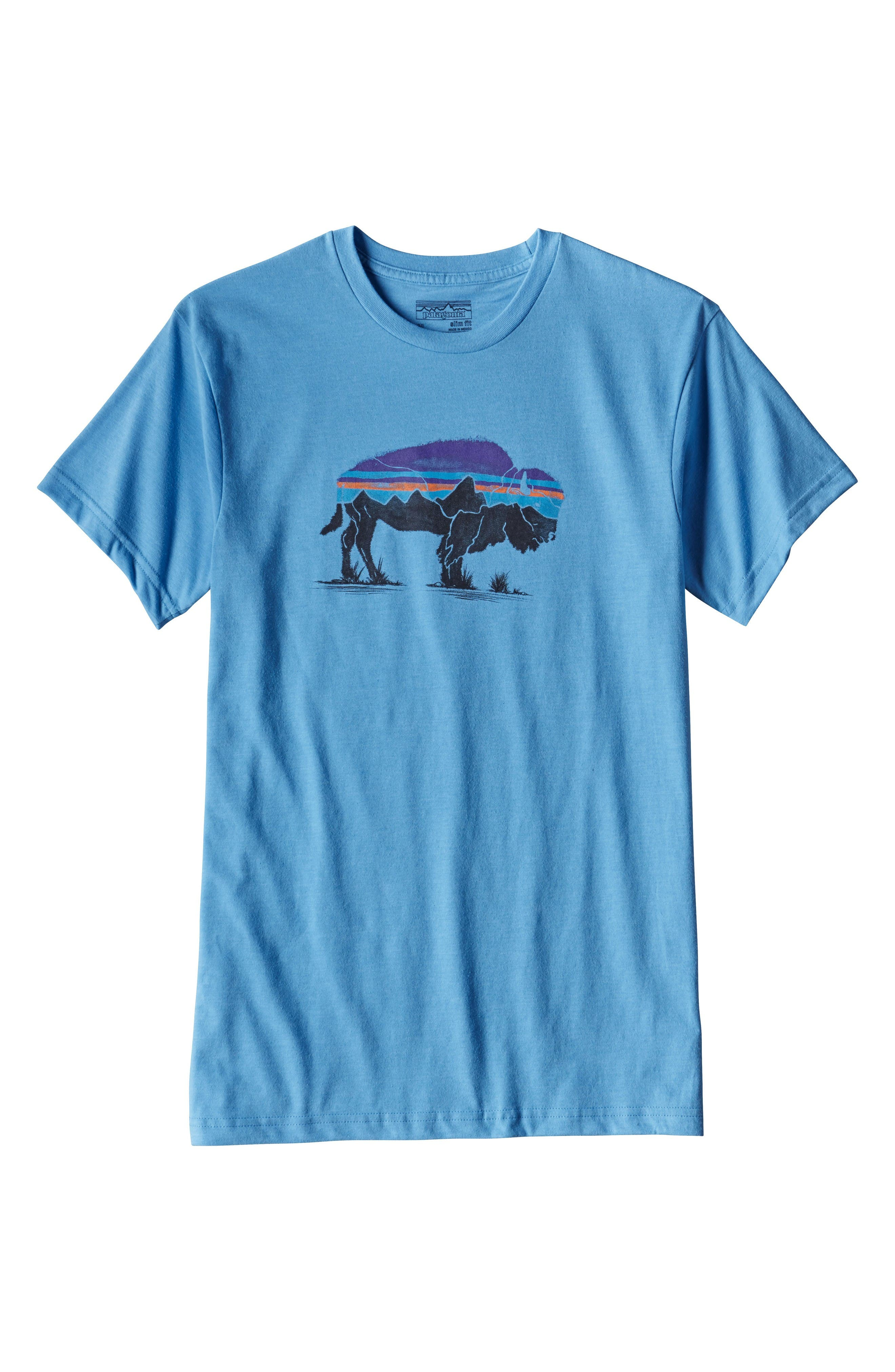 Fitz Roy Bison T-Shirt,                             Alternate thumbnail 5, color,                             Radar Blue