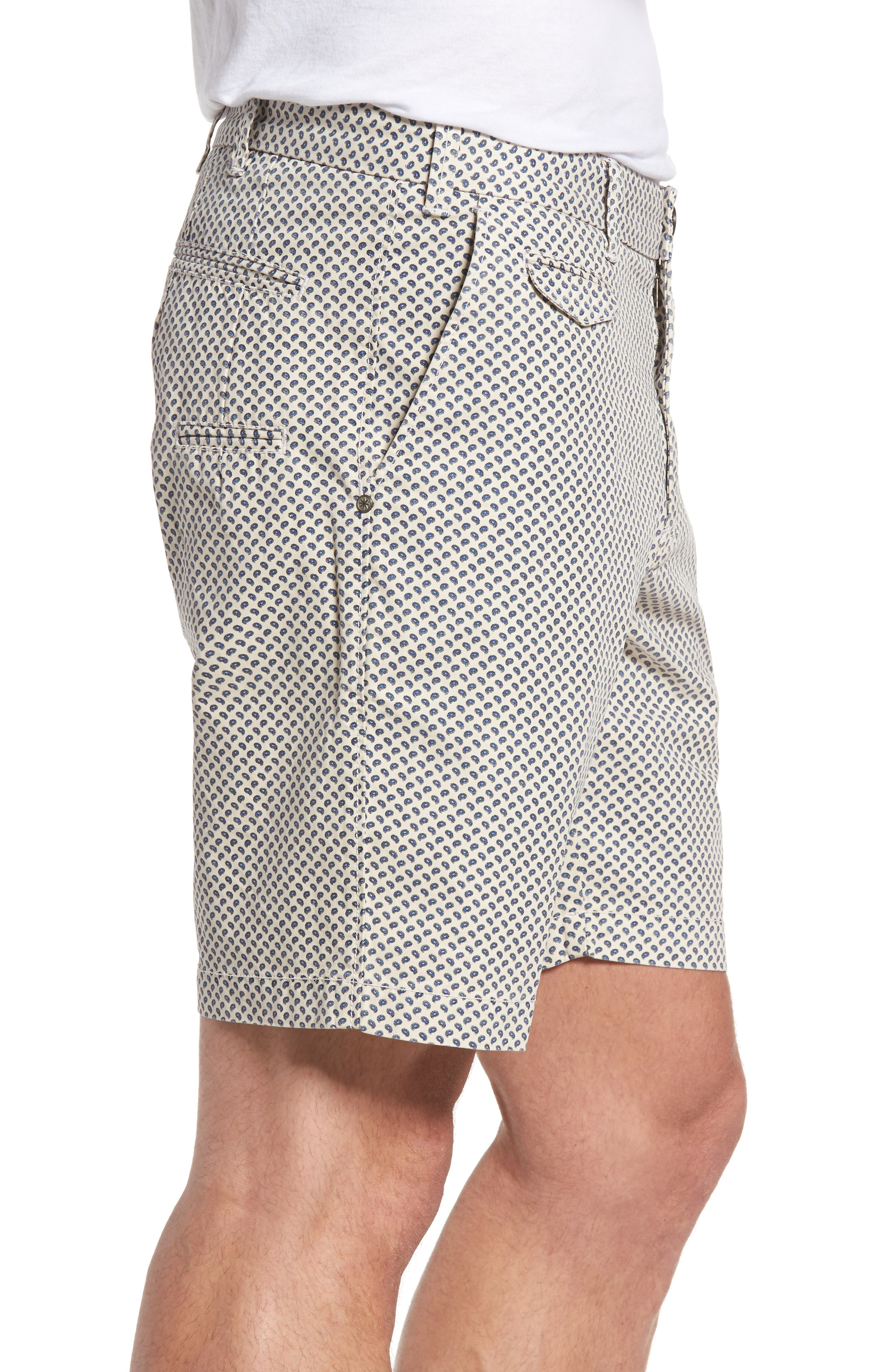 Pierce Print Flat Front Shorts,                             Alternate thumbnail 3, color,                             Stone