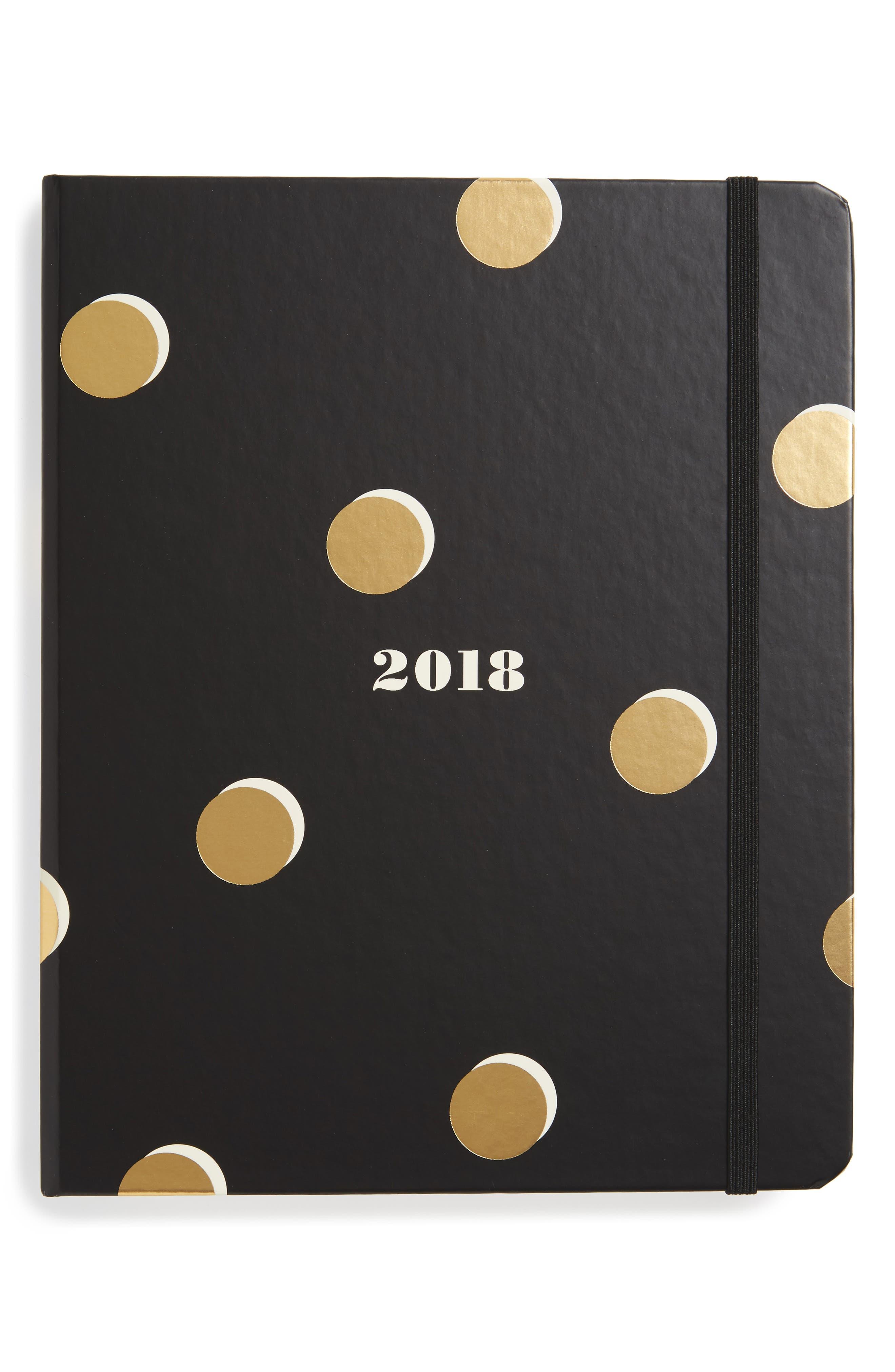 large 17-month agenda,                         Main,                         color, Scatter Dot