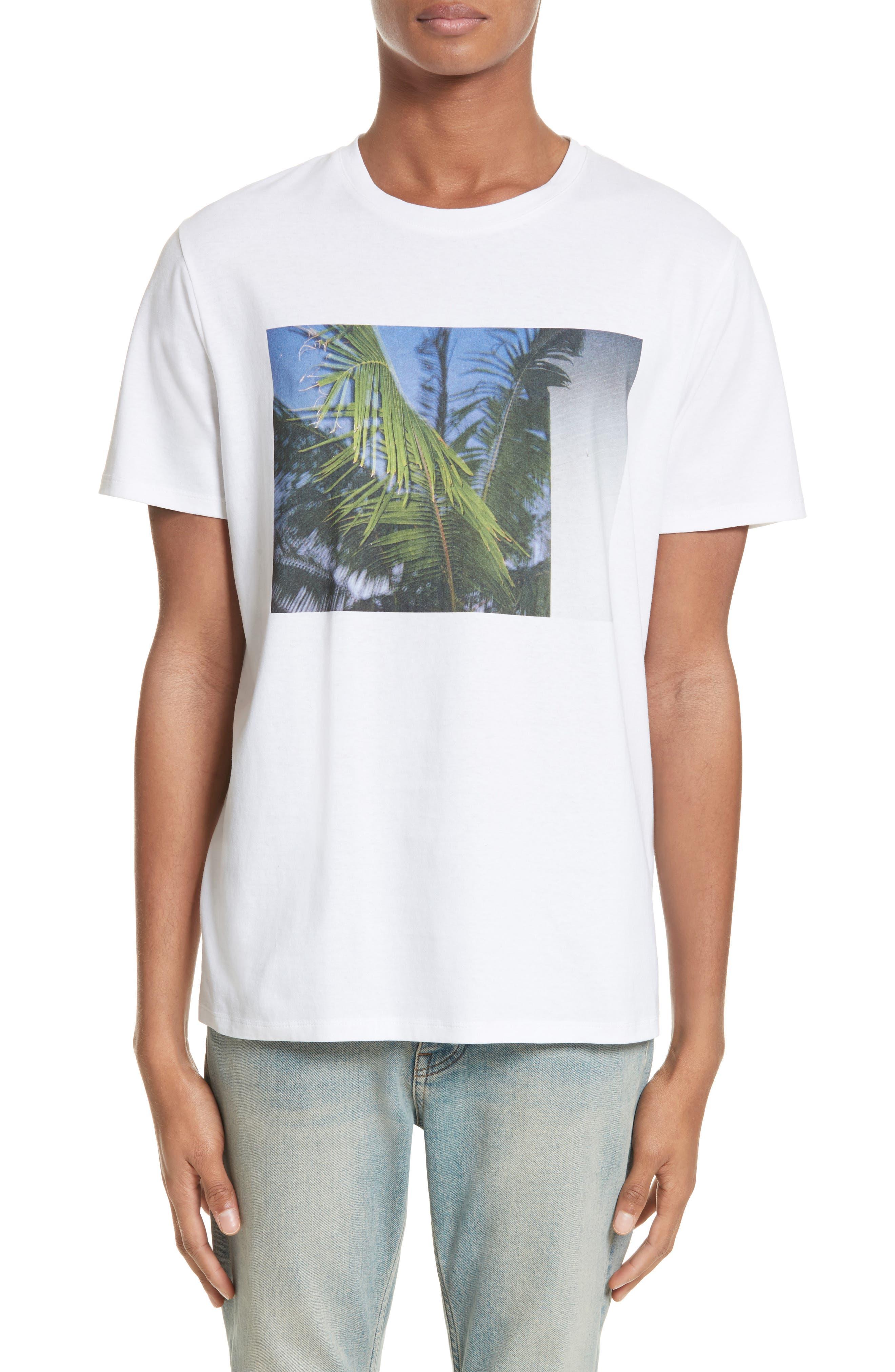 Palm Tree Graphic T-Shirt,                             Main thumbnail 1, color,                             Blanc Aab