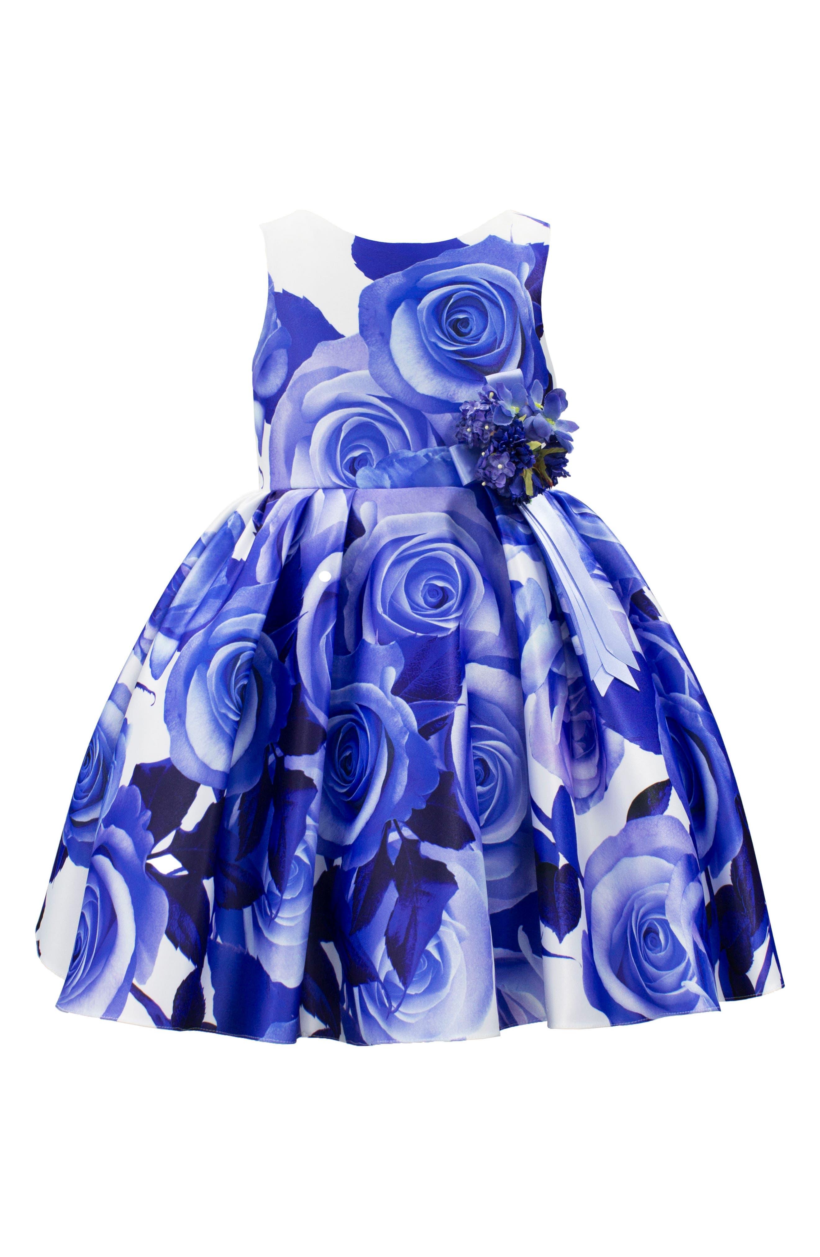 David Charles Rose Print Sleeveless Dress (Toddler Girls, Little Girls & Big Girls)
