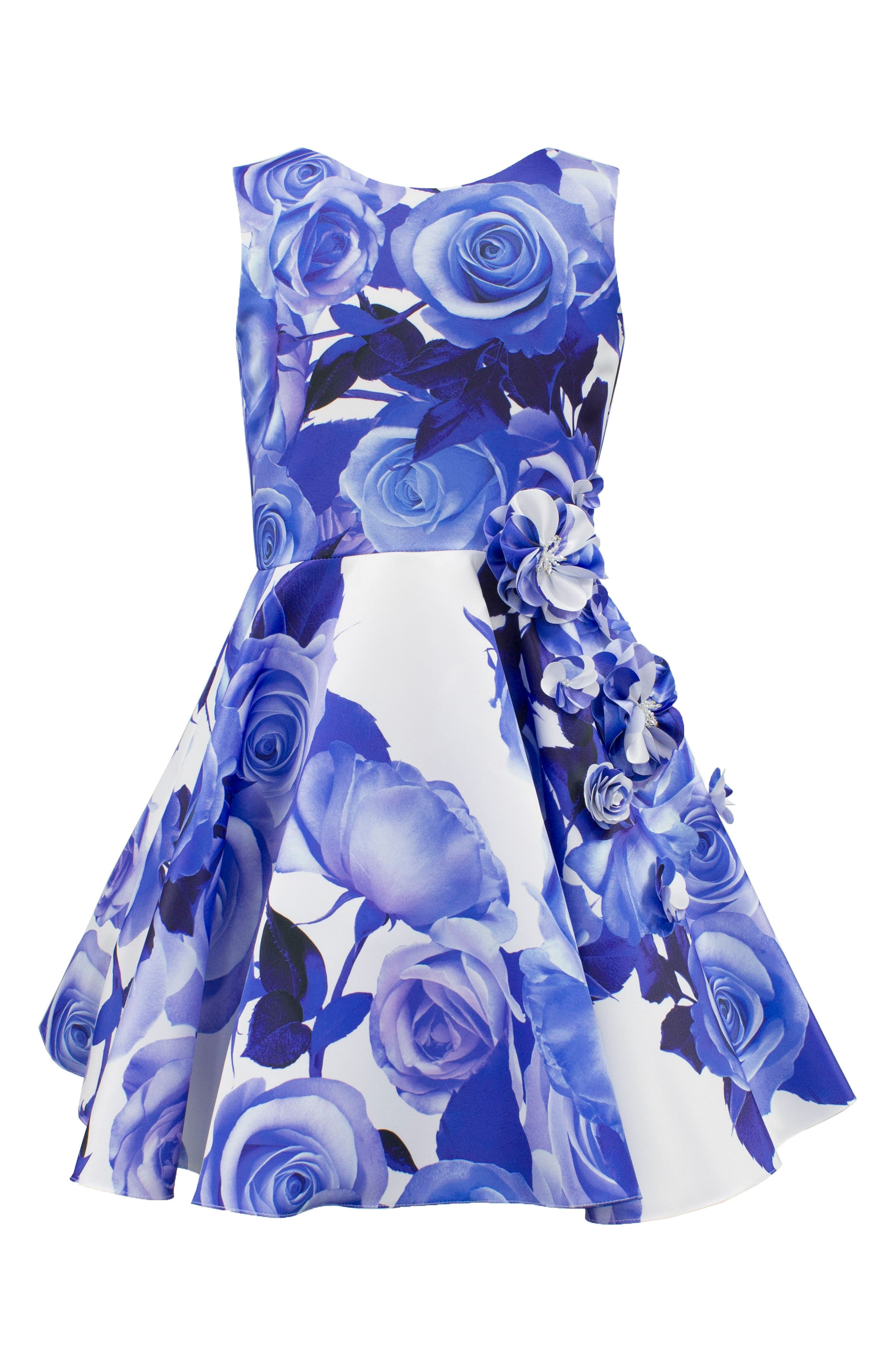 Rose Print Fit & Flare Dress,                         Main,                         color, Blue