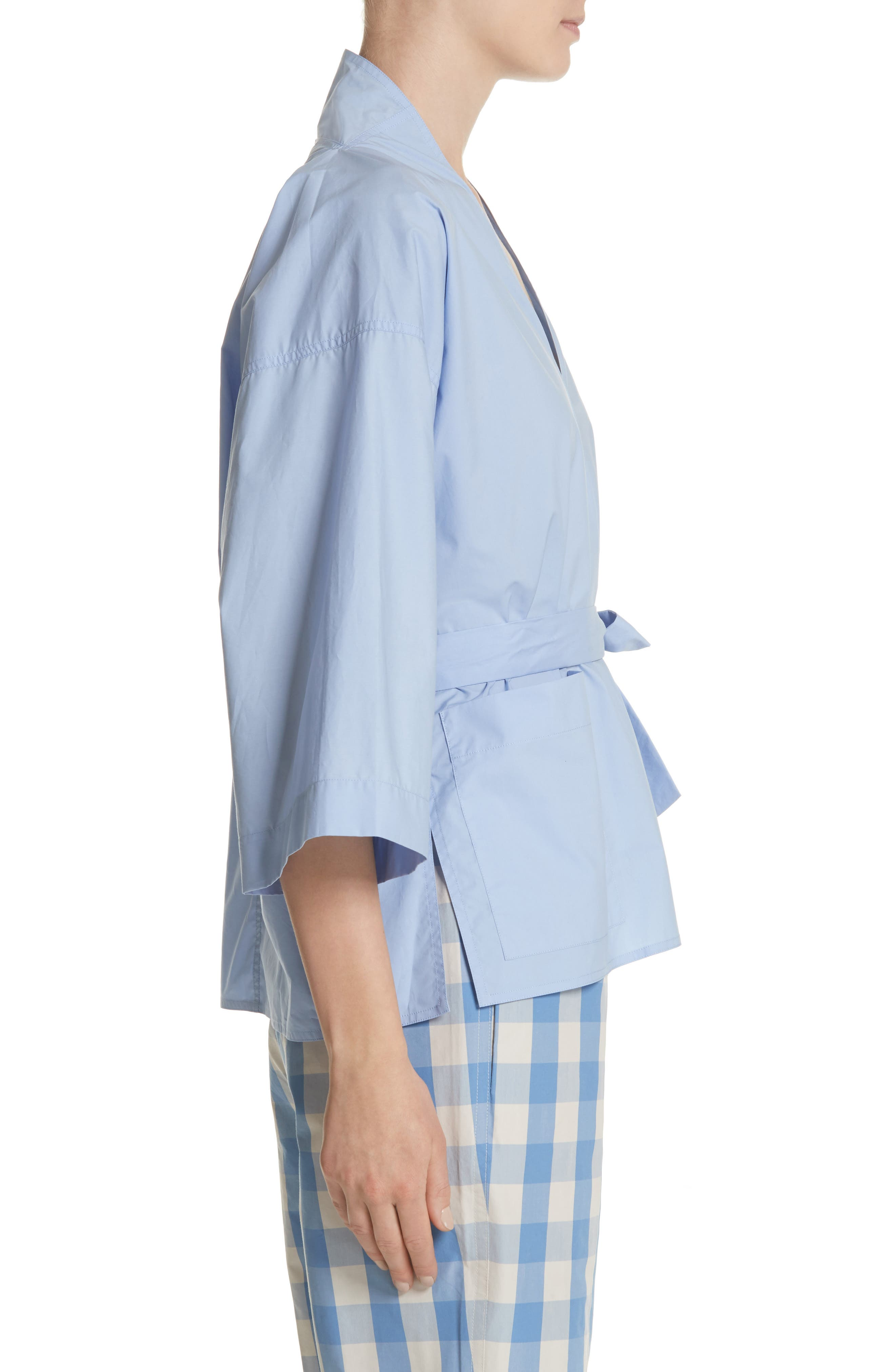 Belted Blouse,                             Alternate thumbnail 3, color,                             Dragee