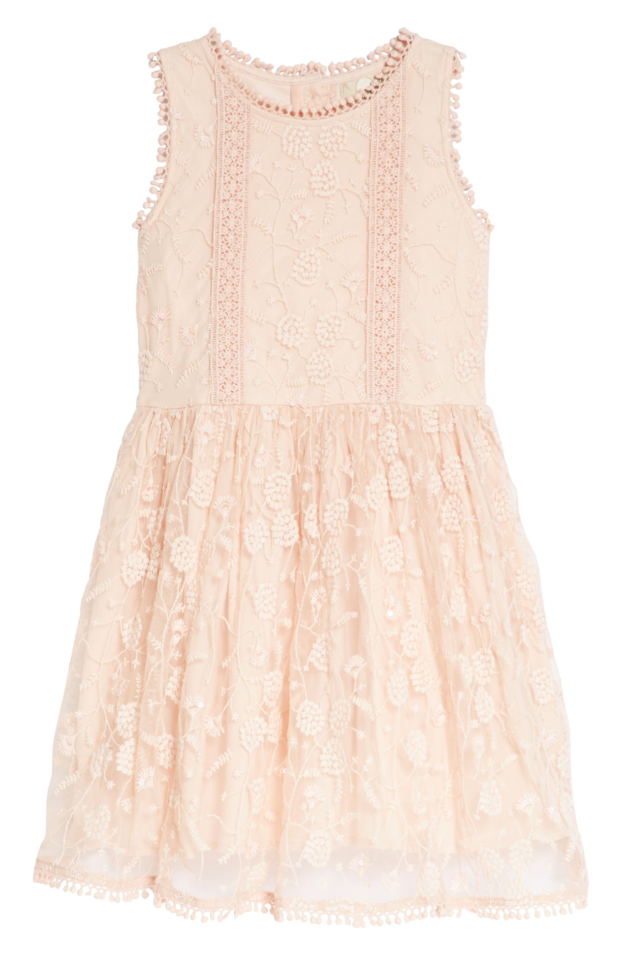 Peek Alice Embroidered Lace Dress (Toddler Girls, Little Girls & Big Girls)