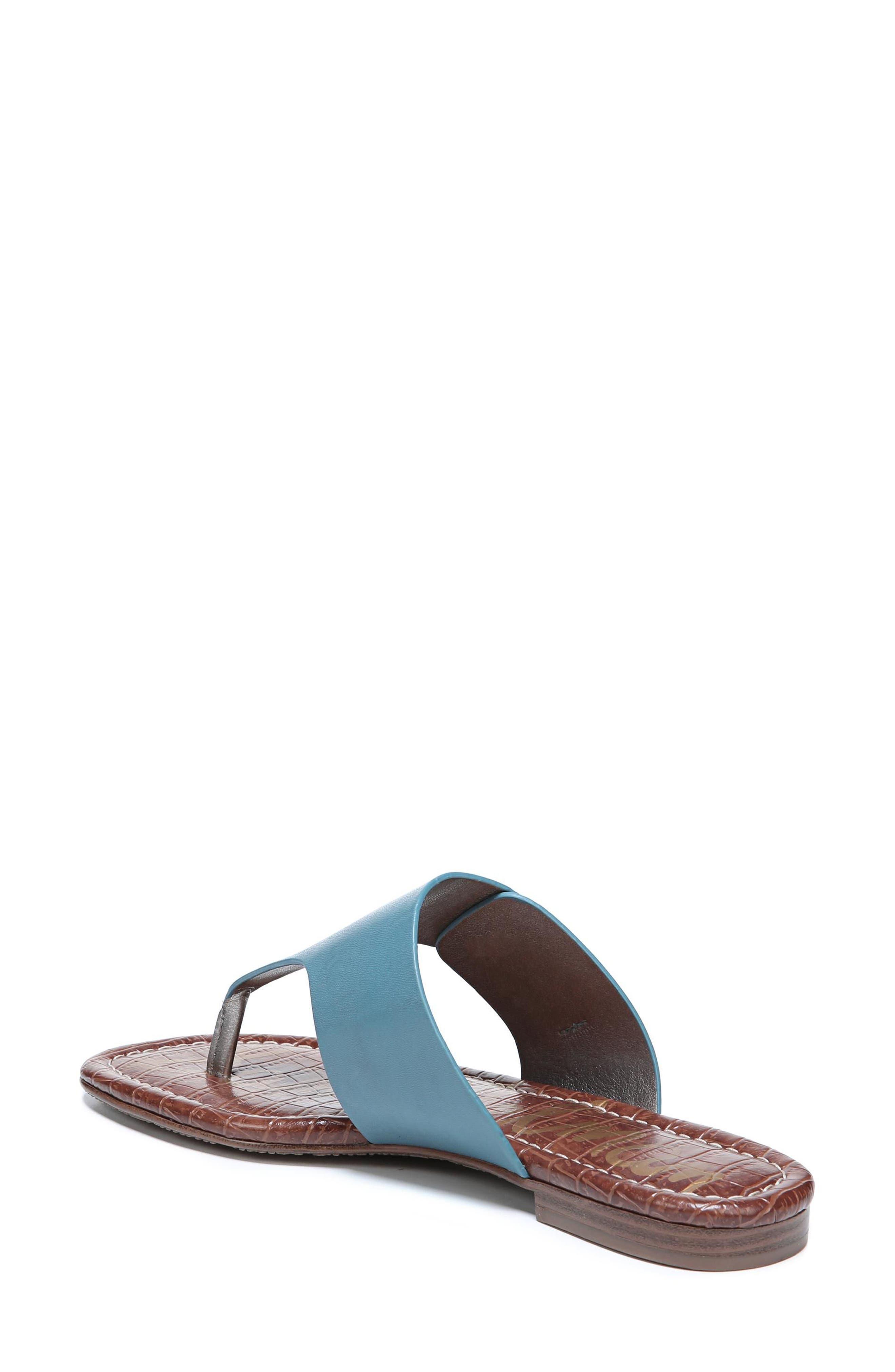 Barry V-Strap Thong Sandal,                             Alternate thumbnail 2, color,                             Denim Blue Leather