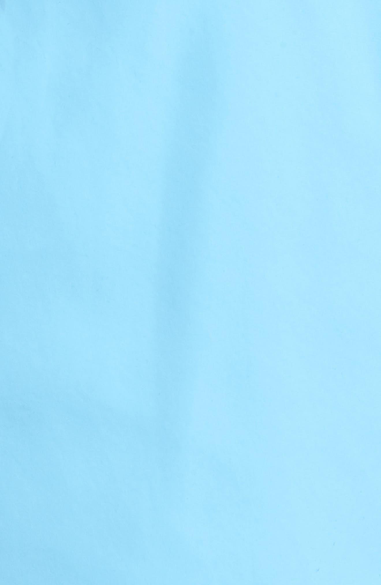 Seabream Stripe Swim Trunks,                             Alternate thumbnail 6, color,                             Blue