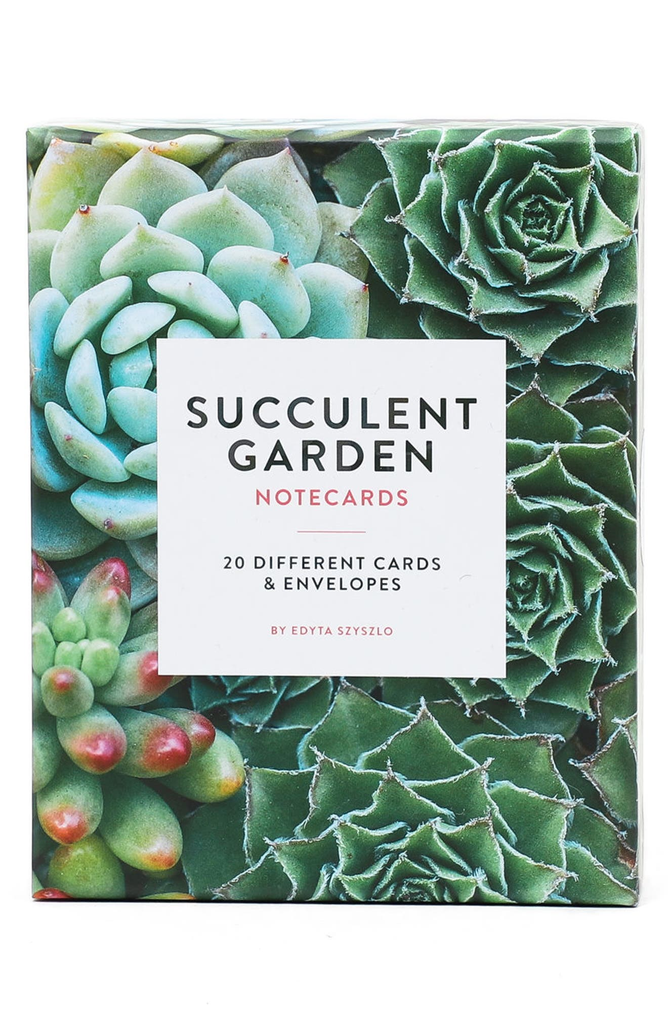 Chronicle Books Set of 20 Succulent Notecards