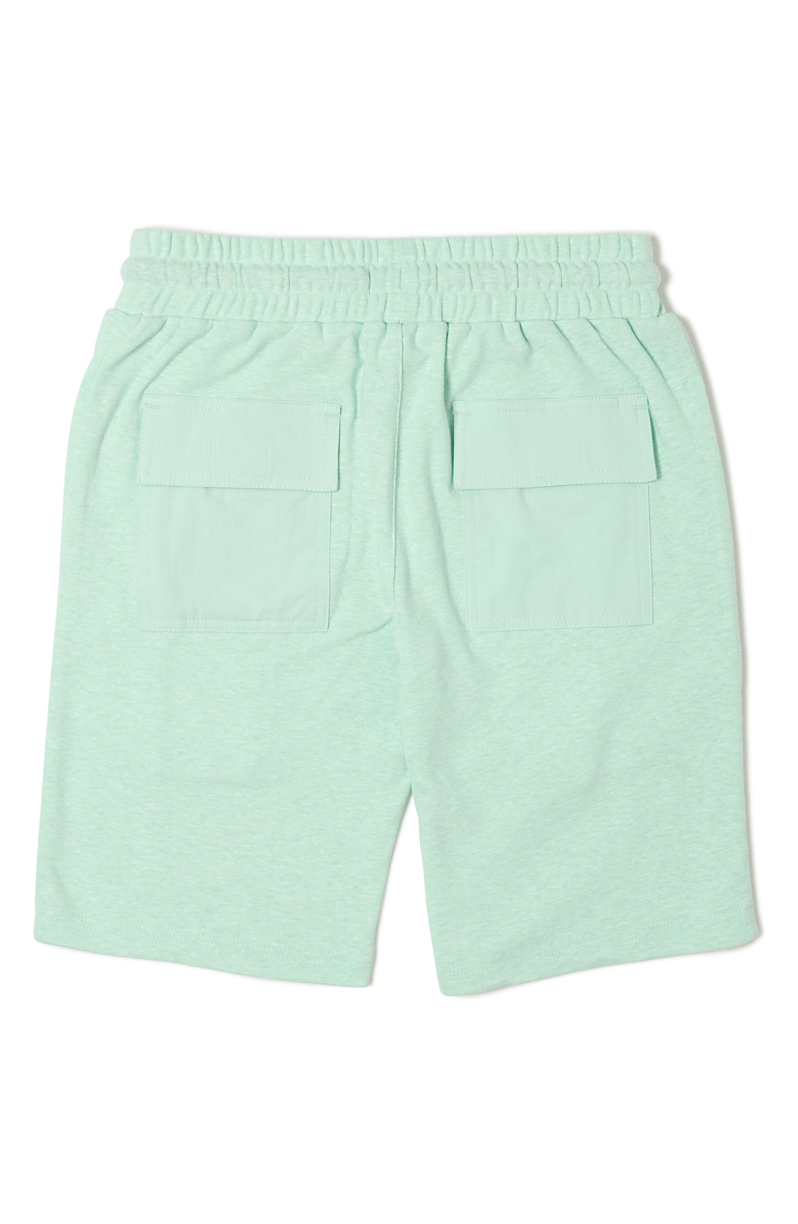 Ranger Knit Shorts,                             Alternate thumbnail 2, color,                             Green