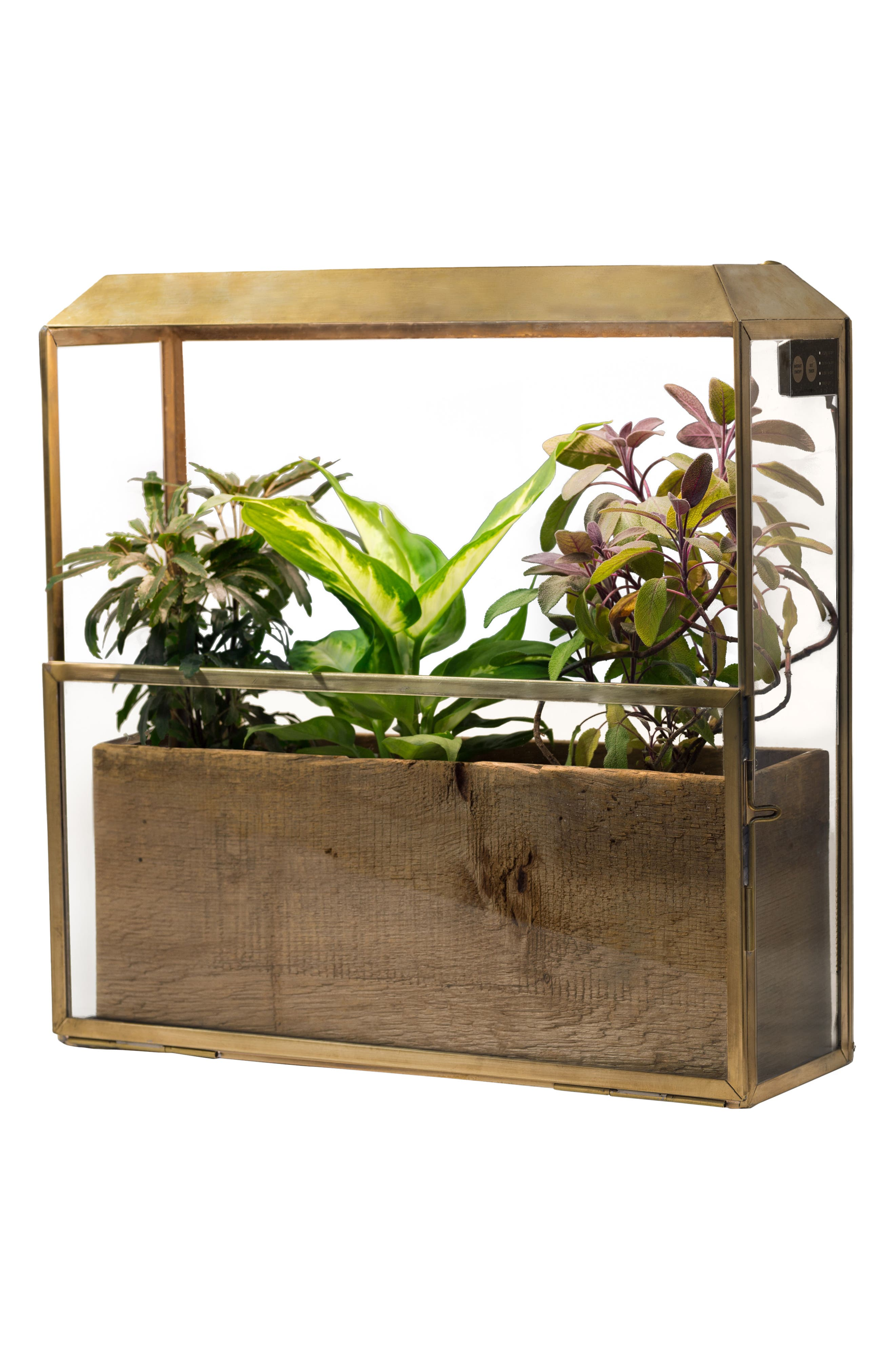 Growhouse Greenhouse & Growlight,                             Alternate thumbnail 5, color,                             Brass N Glass